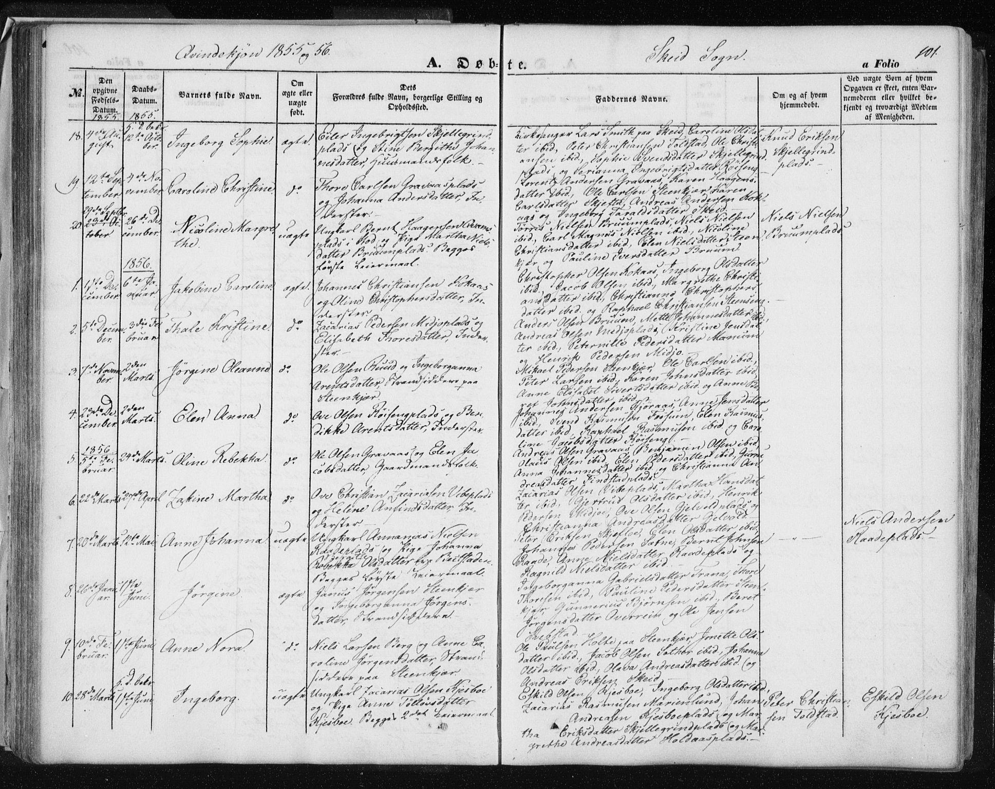 SAT, Ministerialprotokoller, klokkerbøker og fødselsregistre - Nord-Trøndelag, 735/L0342: Ministerialbok nr. 735A07 /2, 1849-1862, s. 101