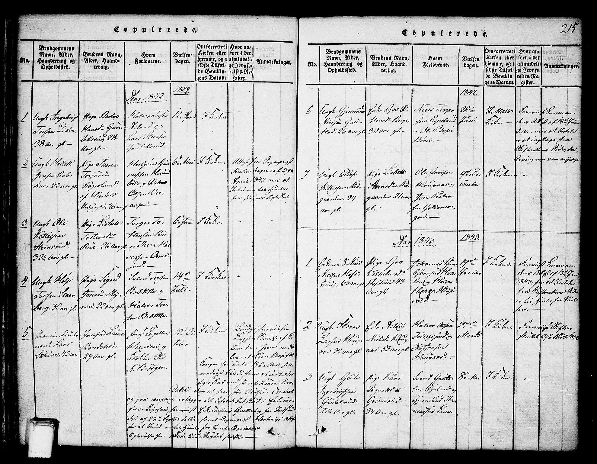 SAKO, Tinn kirkebøker, G/Ga/L0001: Klokkerbok nr. I 1, 1815-1850, s. 215