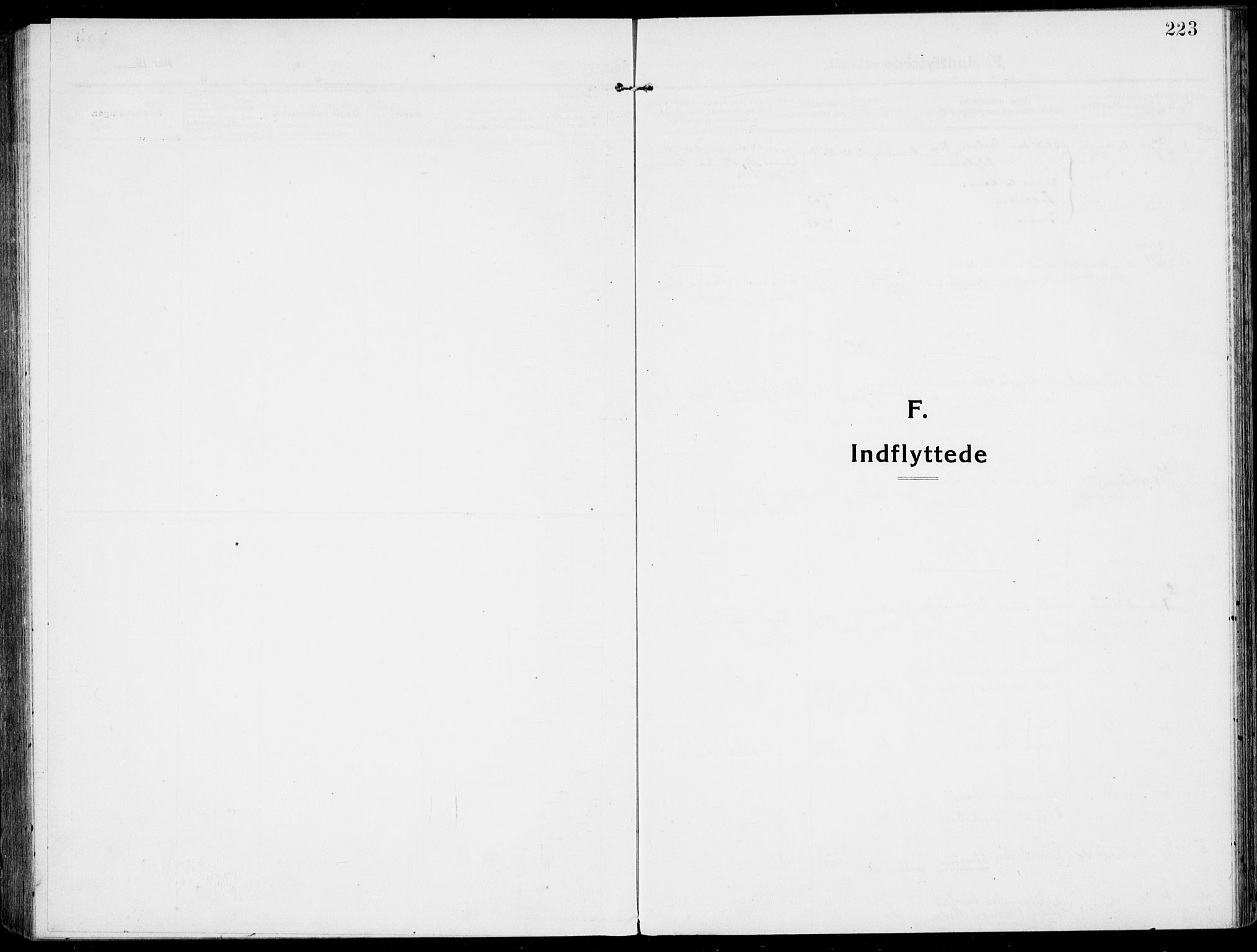 SAKO, Rjukan kirkebøker, F/Fa/L0002: Ministerialbok nr. 2, 1912-1917, s. 223