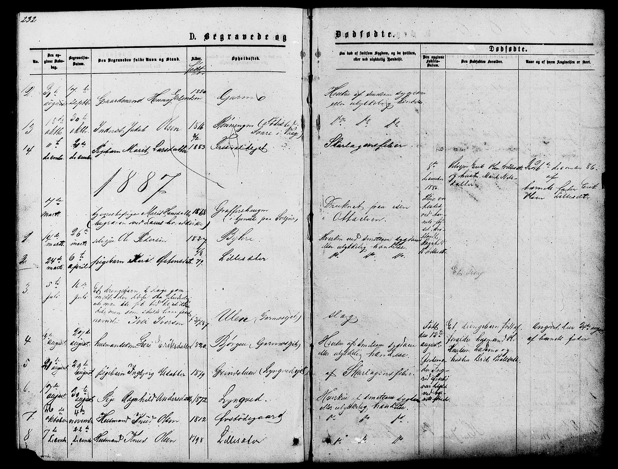 SAH, Lom prestekontor, L/L0005: Klokkerbok nr. 5, 1876-1901, s. 232-233