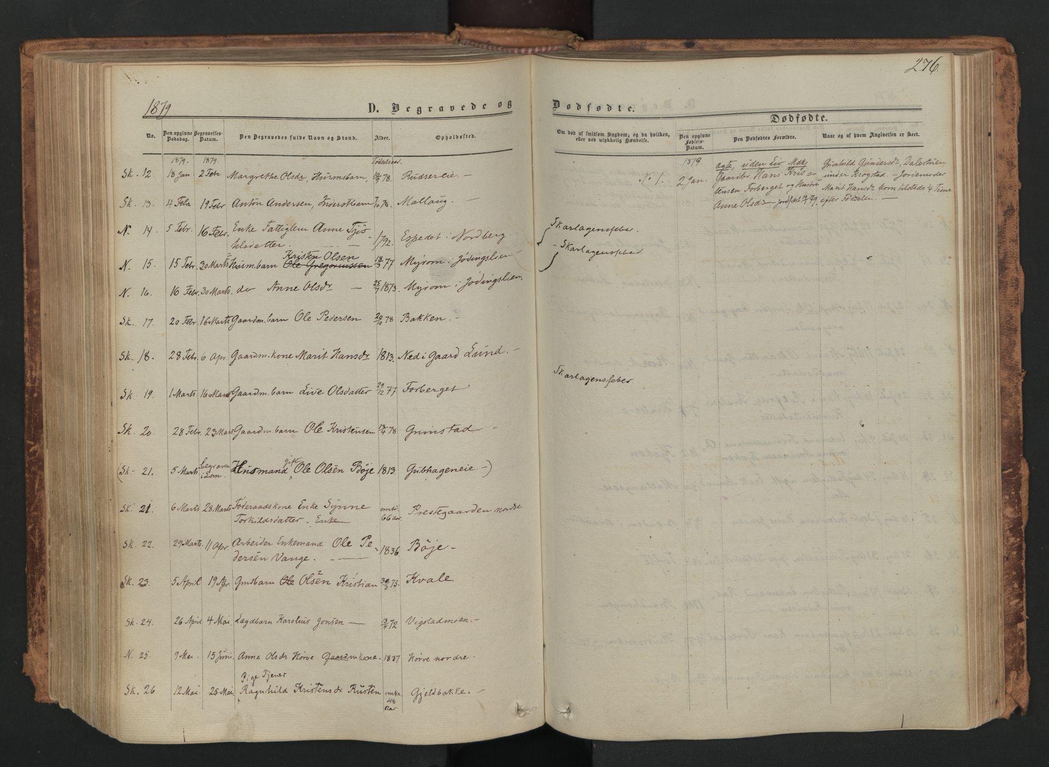 SAH, Skjåk prestekontor, Ministerialbok nr. 1, 1863-1879, s. 276