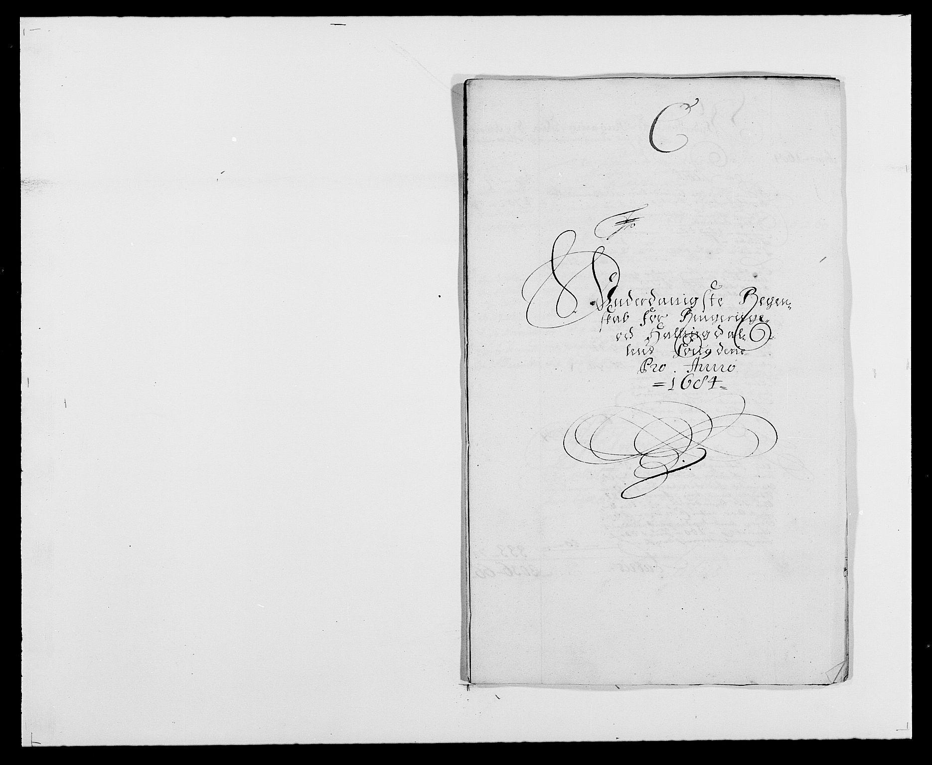 RA, Rentekammeret inntil 1814, Reviderte regnskaper, Fogderegnskap, R21/L1446: Fogderegnskap Ringerike og Hallingdal, 1683-1686, s. 157