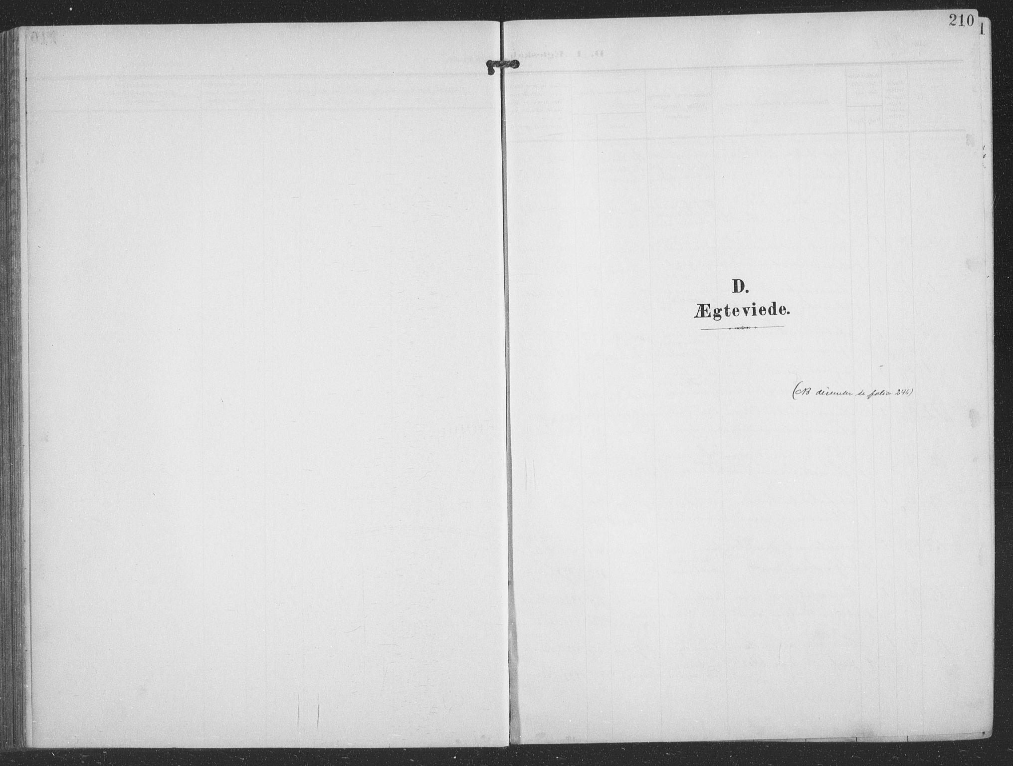 SATØ, Balsfjord sokneprestembete, G/Ga/L0009klokker: Klokkerbok nr. 9, 1906-1920, s. 210