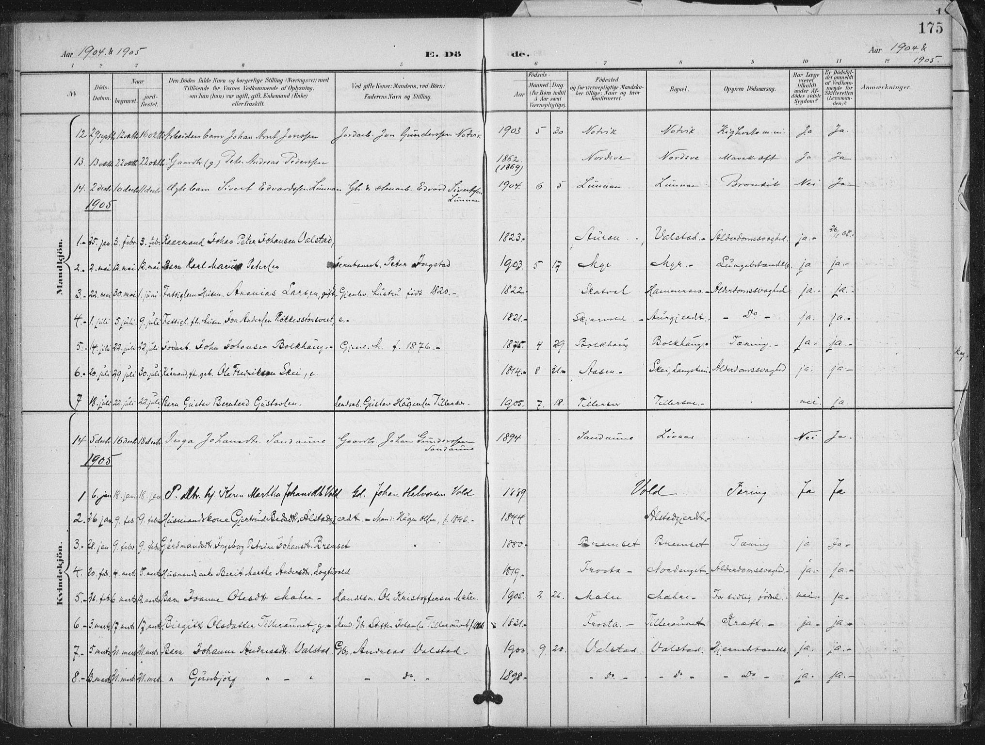 SAT, Ministerialprotokoller, klokkerbøker og fødselsregistre - Nord-Trøndelag, 712/L0101: Ministerialbok nr. 712A02, 1901-1916, s. 175