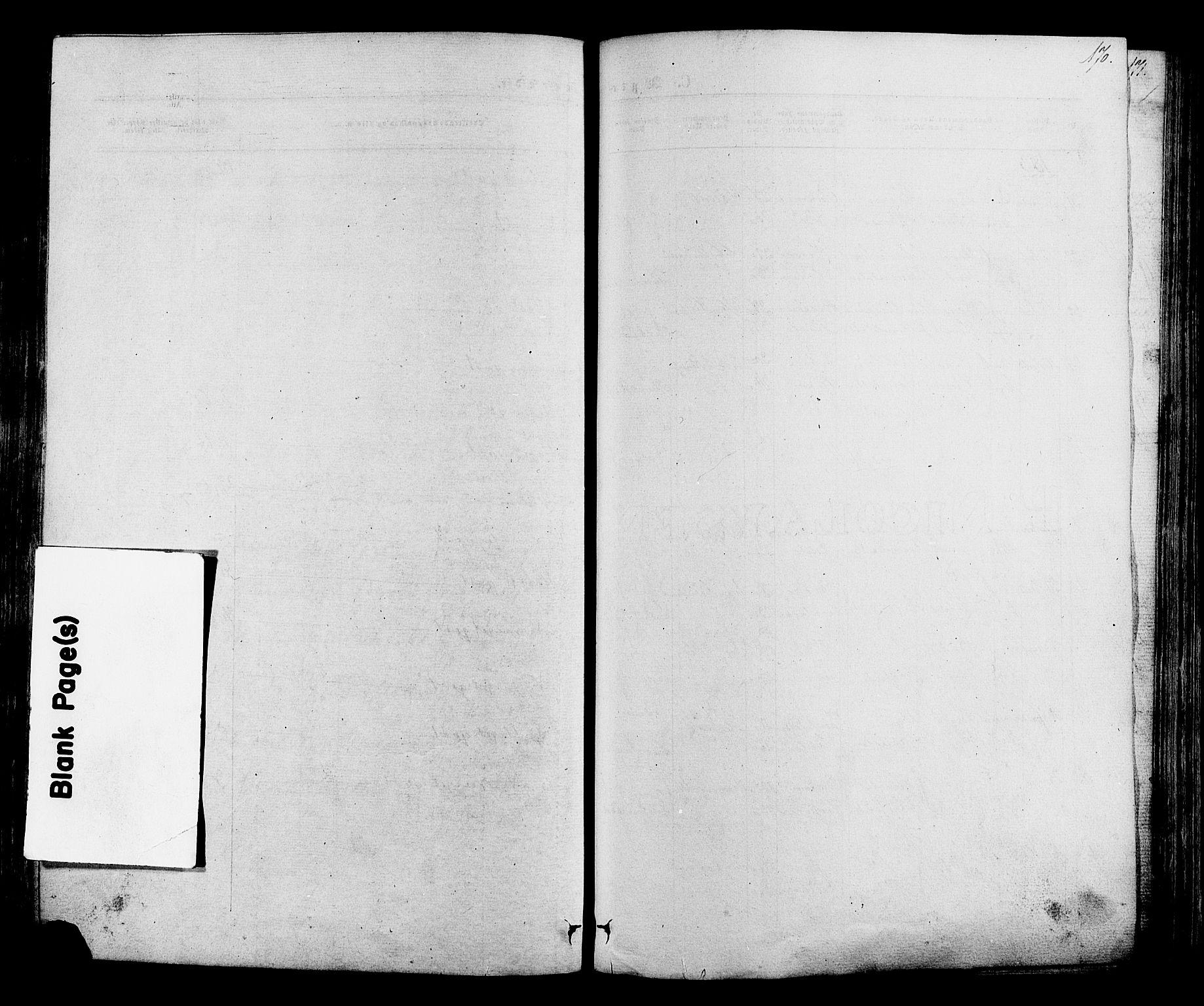 SAH, Lom prestekontor, K/L0007: Ministerialbok nr. 7, 1863-1884, s. 170