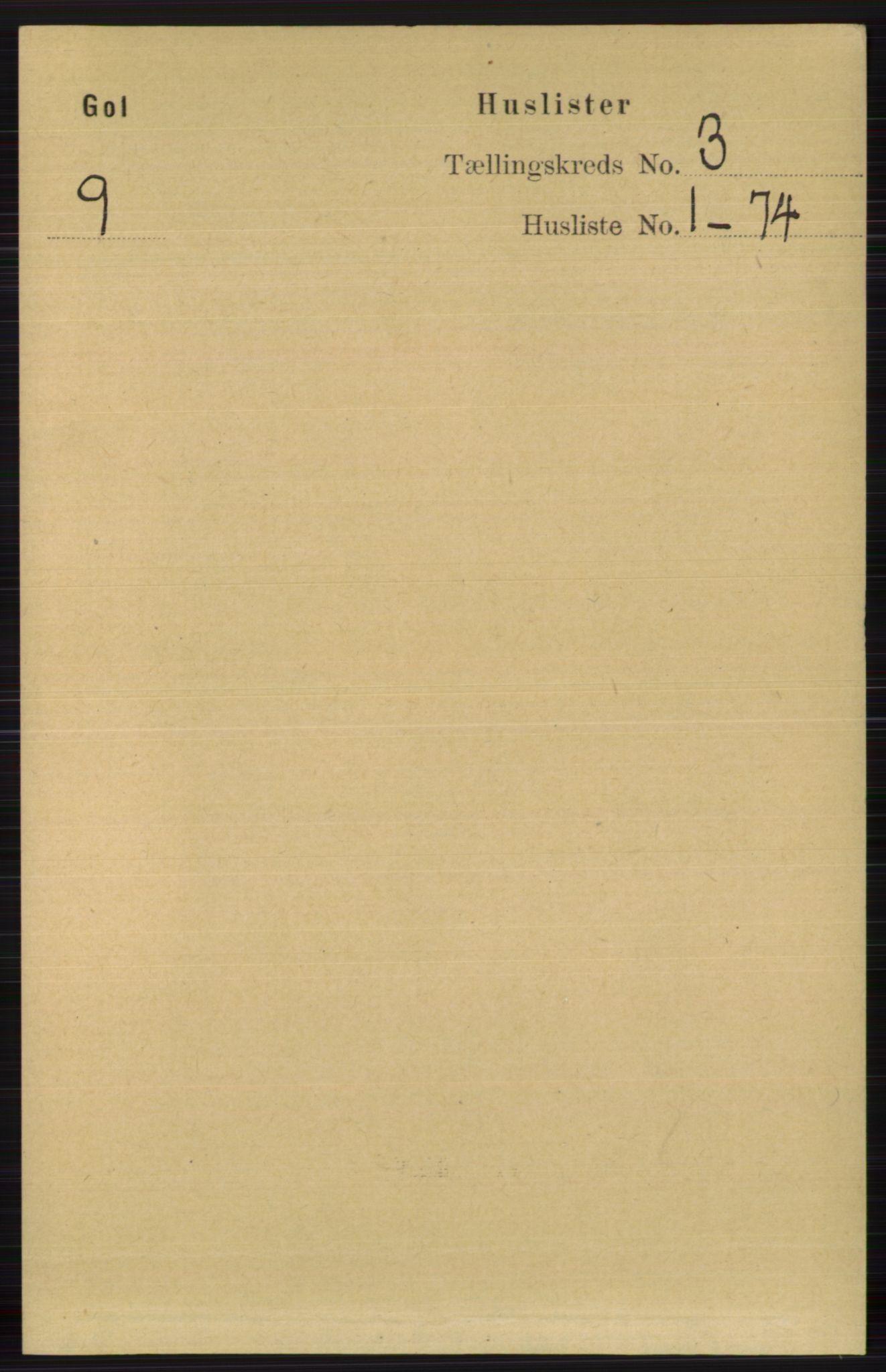 RA, Folketelling 1891 for 0617 Gol og Hemsedal herred, 1891, s. 1194