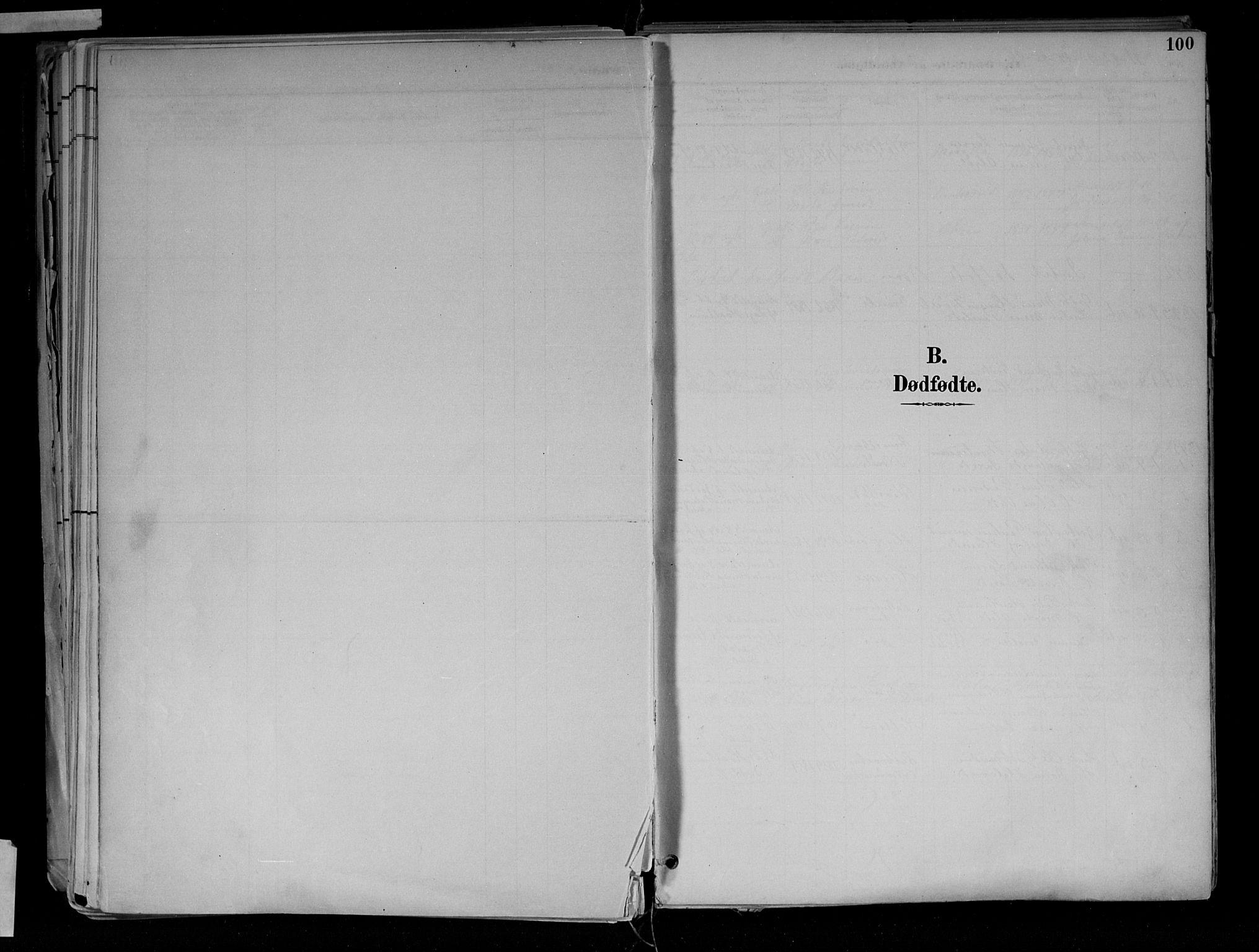 SAH, Jevnaker prestekontor, Ministerialbok nr. 10, 1891-1906, s. 100