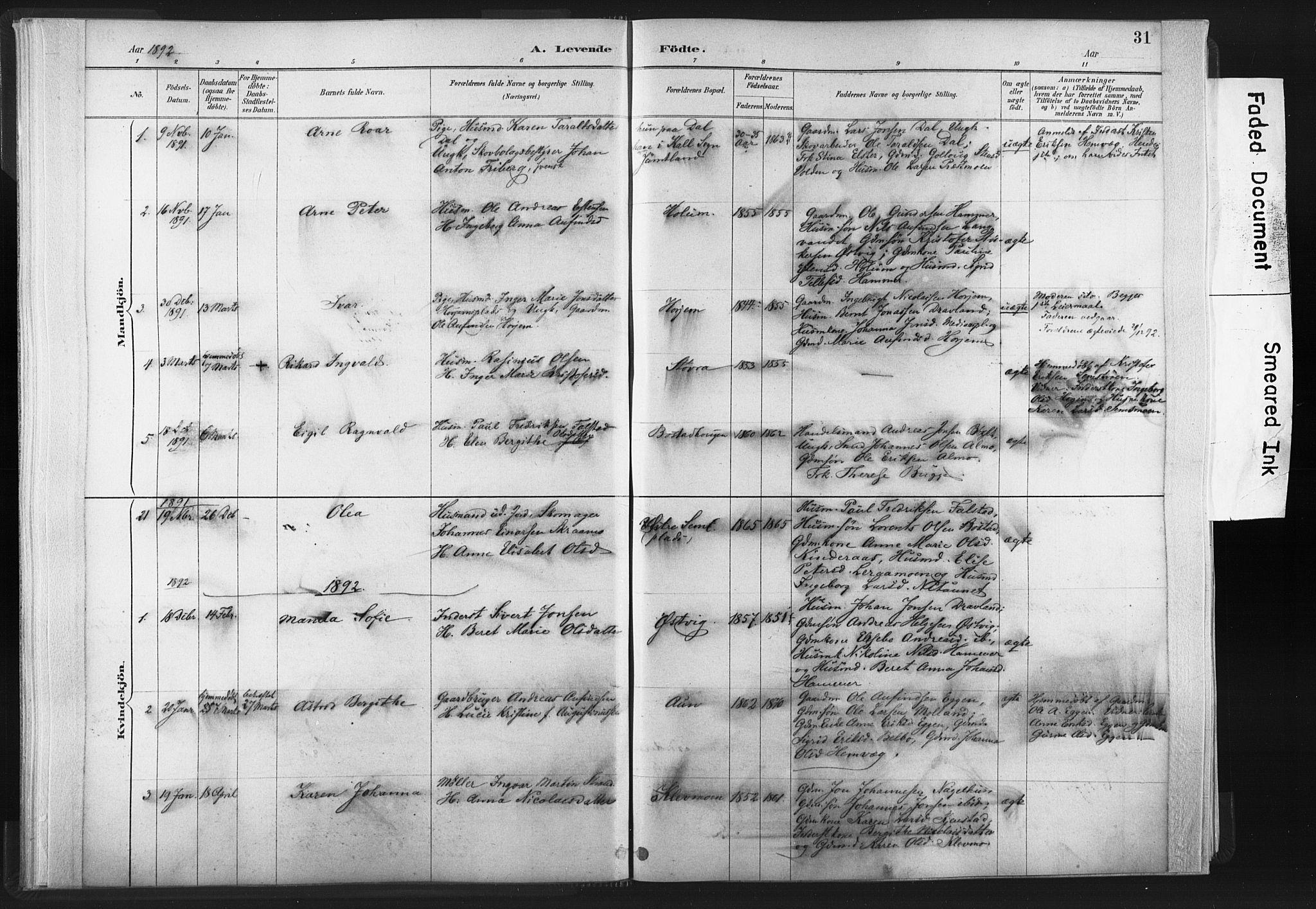 SAT, Ministerialprotokoller, klokkerbøker og fødselsregistre - Nord-Trøndelag, 749/L0474: Ministerialbok nr. 749A08, 1887-1903, s. 31
