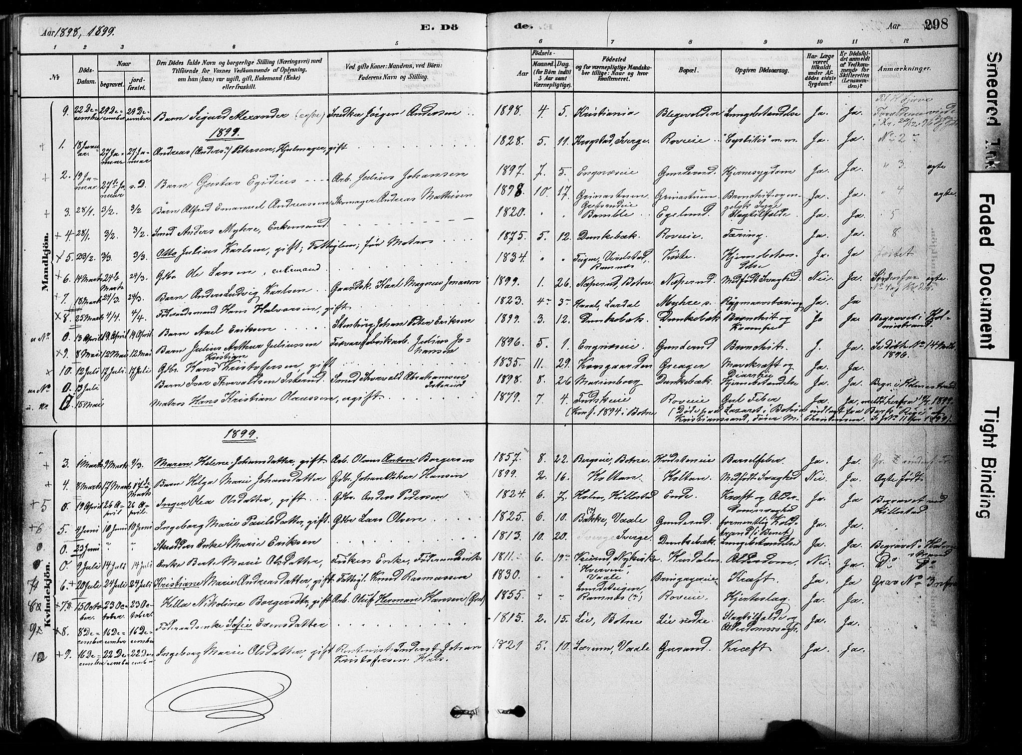 SAKO, Botne kirkebøker, F/Fa/L0007: Ministerialbok nr. I 7, 1878-1910, s. 298