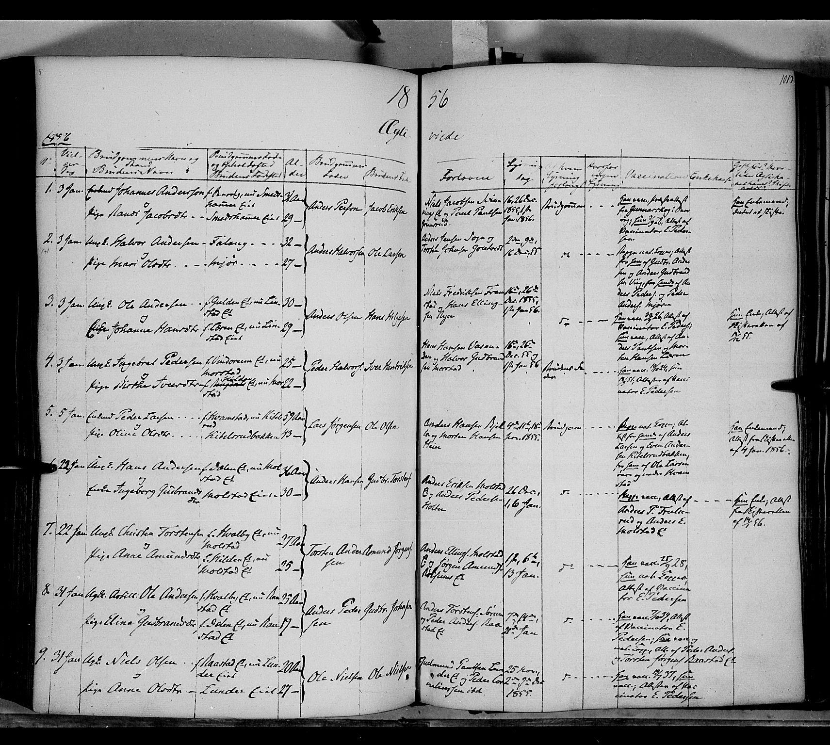 SAH, Gran prestekontor, Ministerialbok nr. 11, 1842-1856, s. 1012-1013