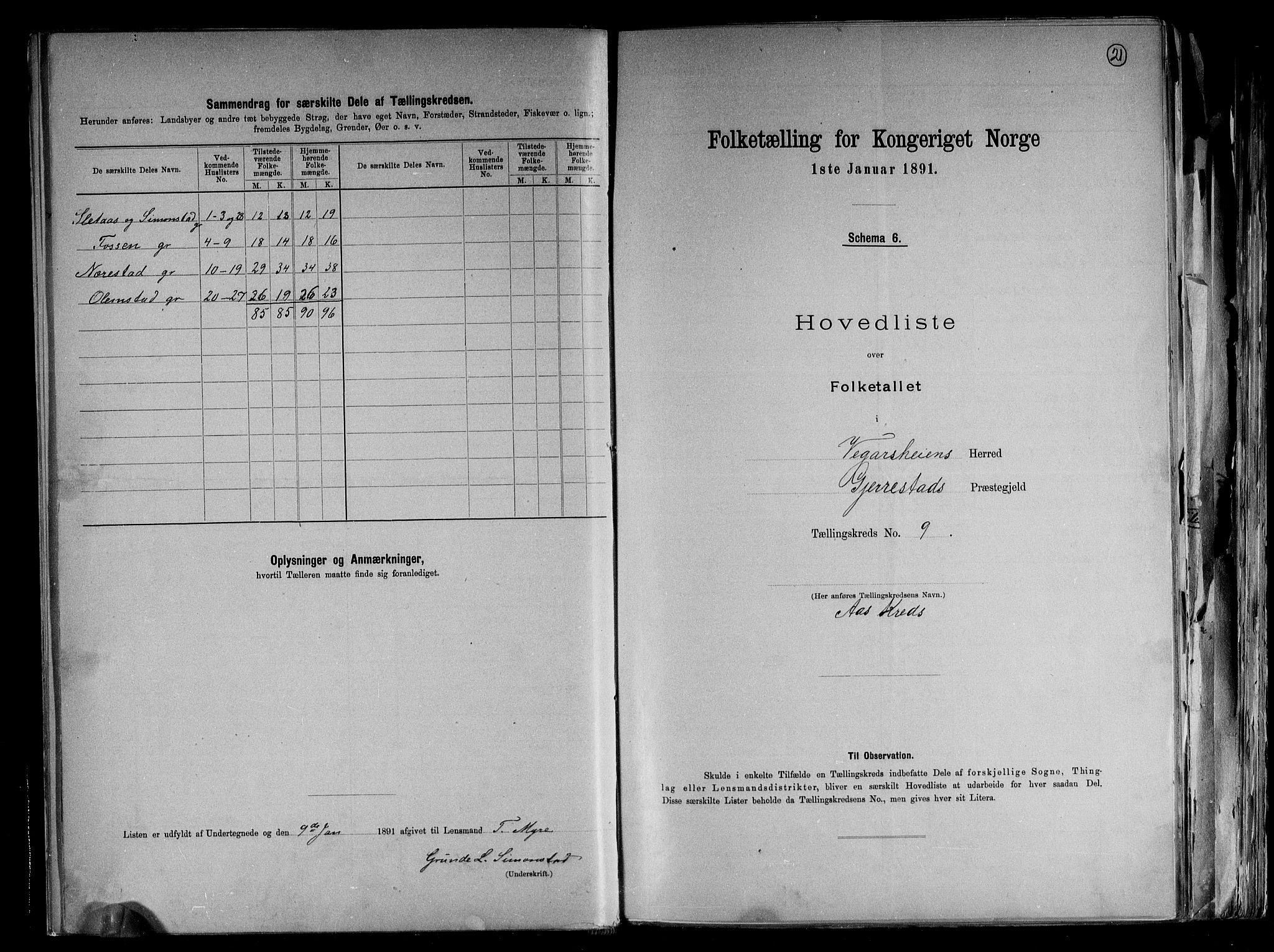 RA, Folketelling 1891 for 0912 Vegårshei herred, 1891, s. 21