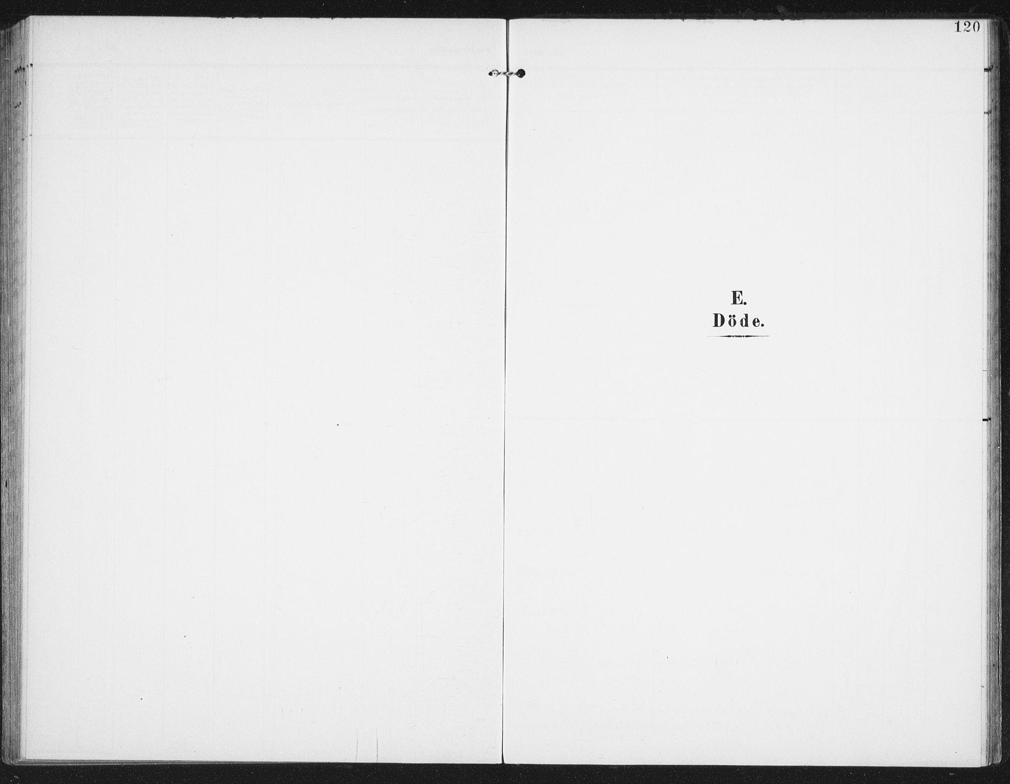 SAT, Ministerialprotokoller, klokkerbøker og fødselsregistre - Nordland, 886/L1221: Ministerialbok nr. 886A03, 1903-1913, s. 120
