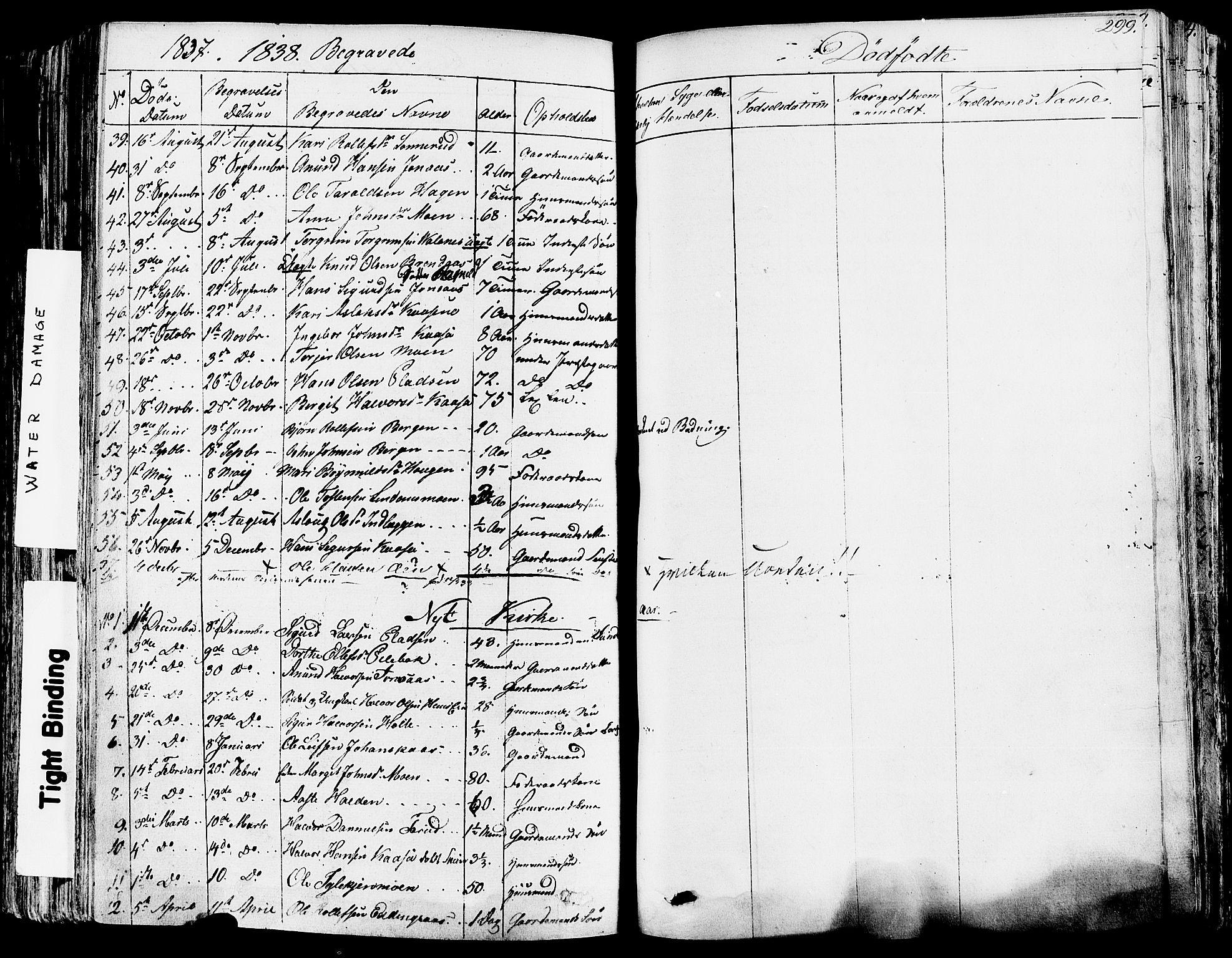 SAKO, Sauherad kirkebøker, F/Fa/L0006: Ministerialbok nr. I 6, 1827-1850, s. 299