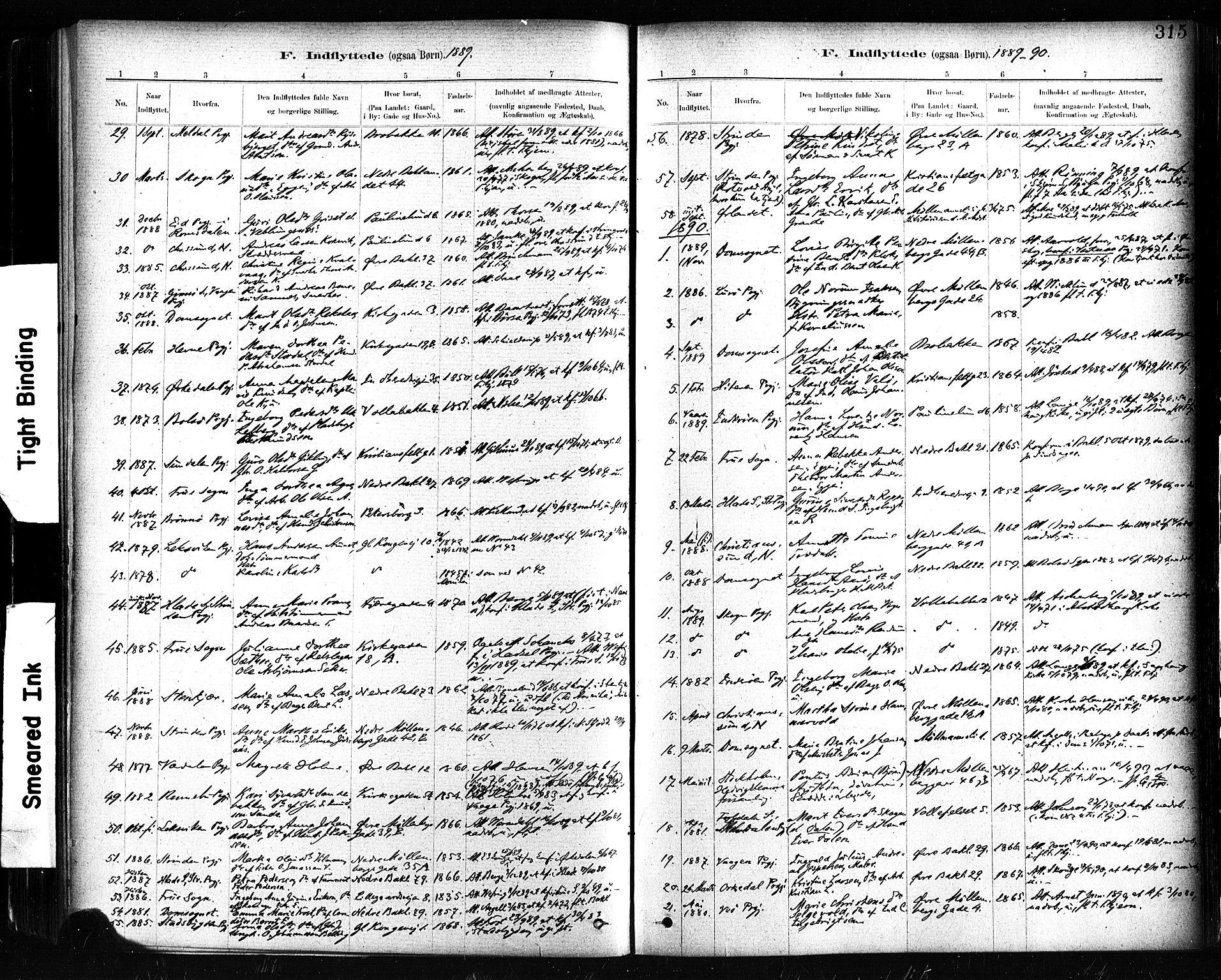 SAT, Ministerialprotokoller, klokkerbøker og fødselsregistre - Sør-Trøndelag, 604/L0189: Ministerialbok nr. 604A10, 1878-1892, s. 315