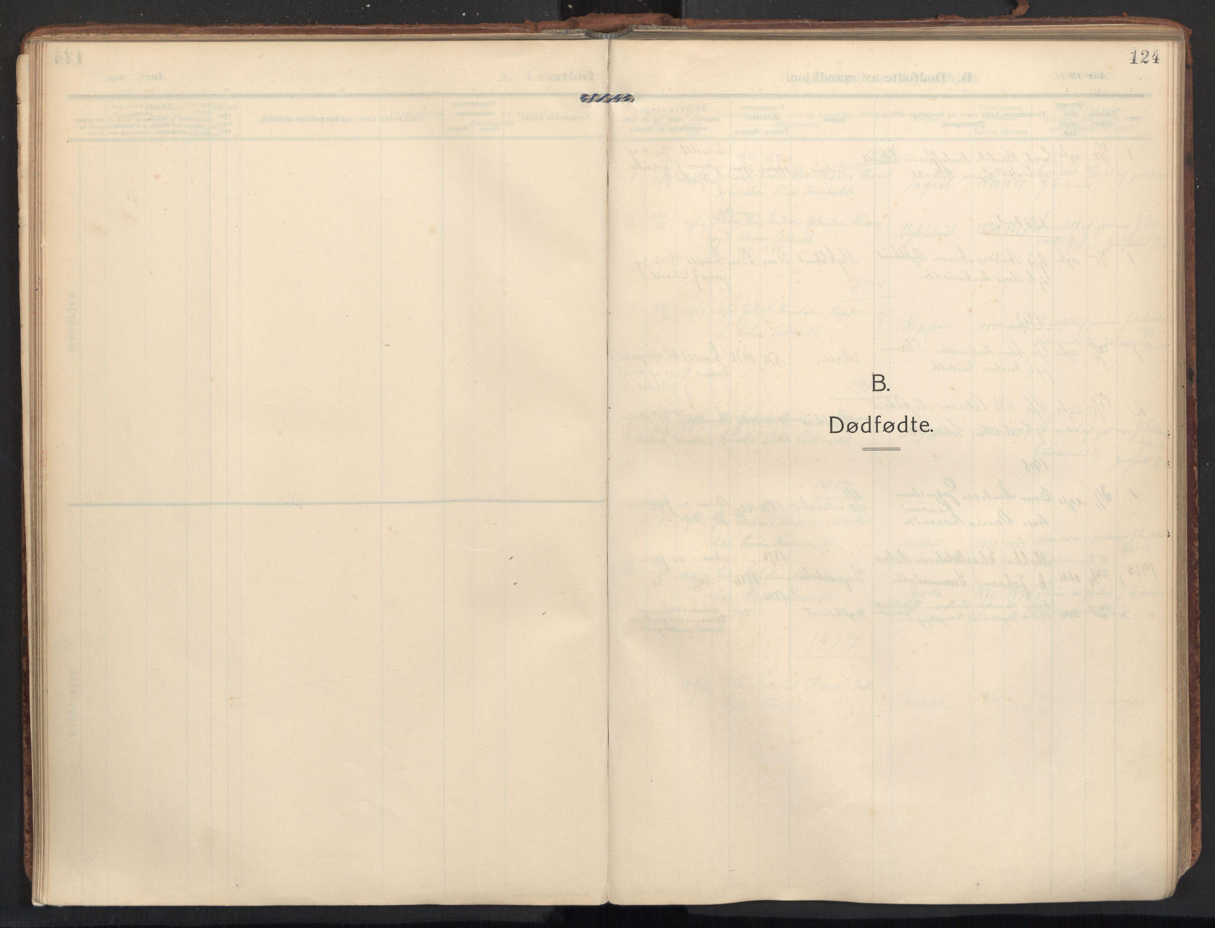 SAT, Ministerialprotokoller, klokkerbøker og fødselsregistre - Møre og Romsdal, 502/L0026: Ministerialbok nr. 502A04, 1909-1933, s. 124