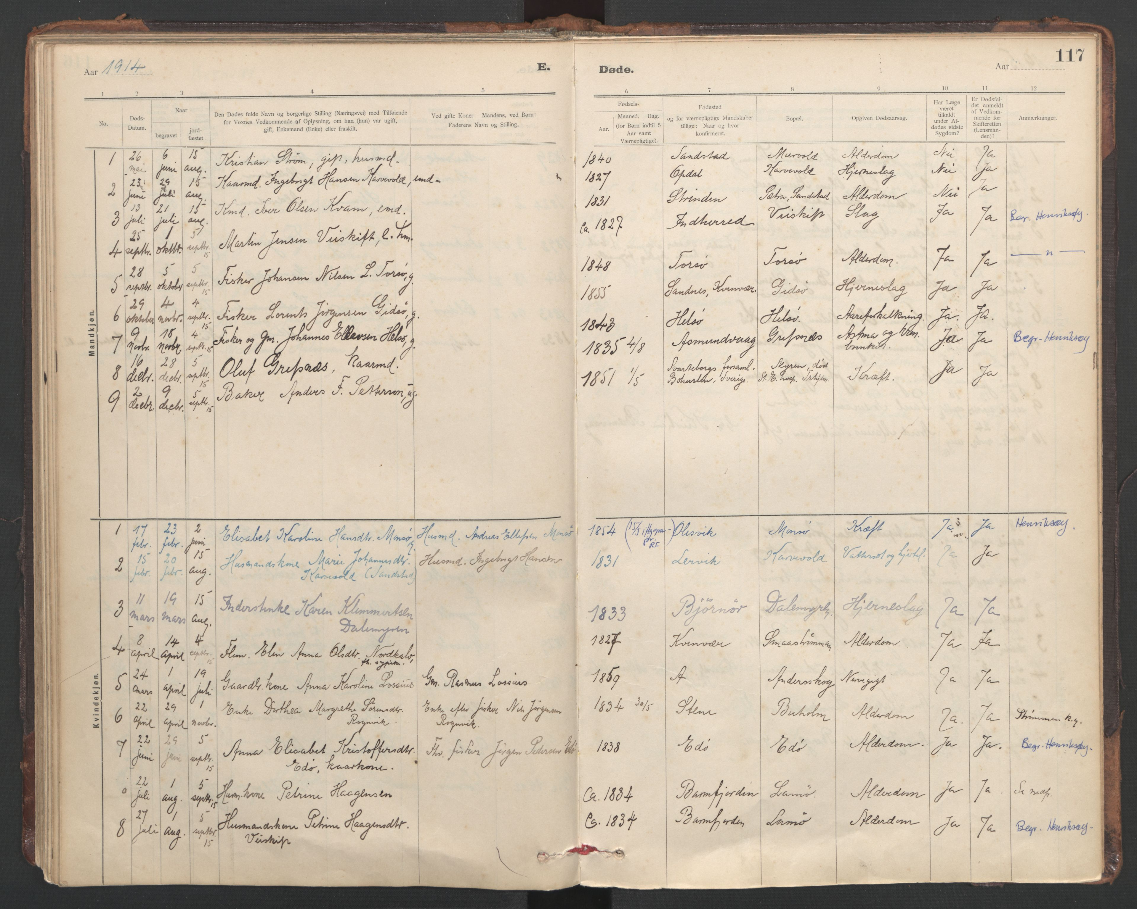 SAT, Ministerialprotokoller, klokkerbøker og fødselsregistre - Sør-Trøndelag, 635/L0552: Ministerialbok nr. 635A02, 1899-1919, s. 117