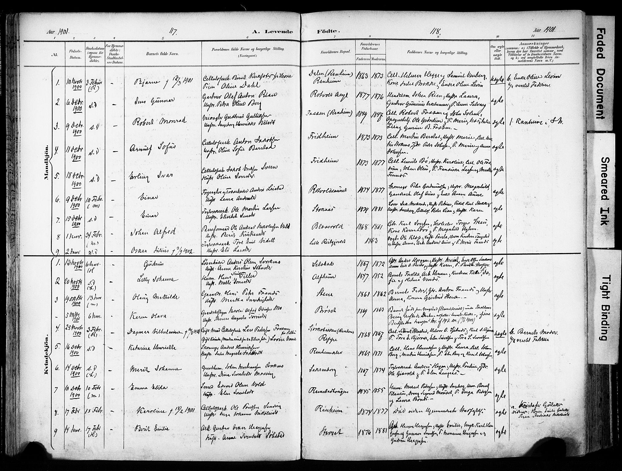 SAT, Ministerialprotokoller, klokkerbøker og fødselsregistre - Sør-Trøndelag, 606/L0301: Ministerialbok nr. 606A16, 1894-1907, s. 117-118