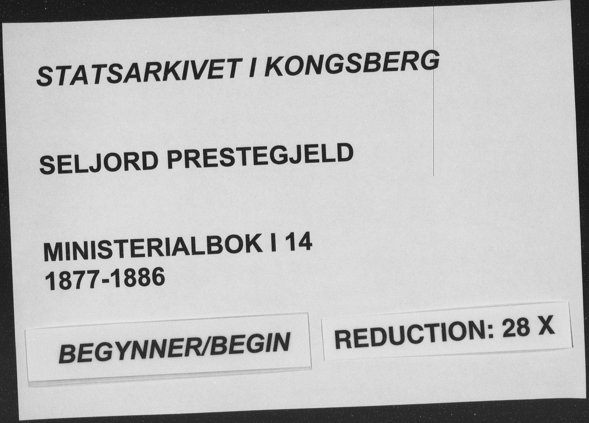 SAKO, Seljord kirkebøker, F/Fa/L0014: Ministerialbok nr. I 14, 1877-1886