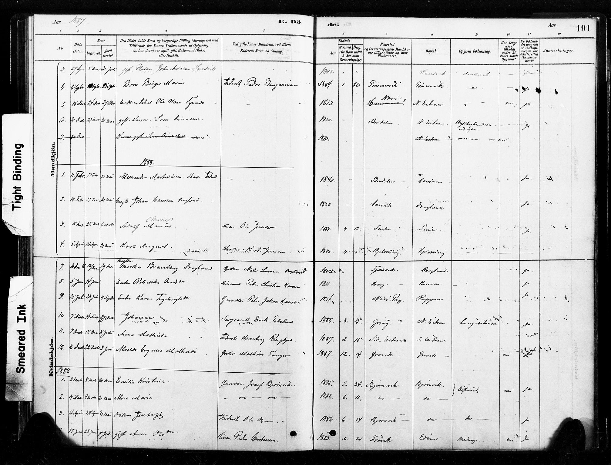 SAT, Ministerialprotokoller, klokkerbøker og fødselsregistre - Nord-Trøndelag, 789/L0705: Ministerialbok nr. 789A01, 1878-1910, s. 191