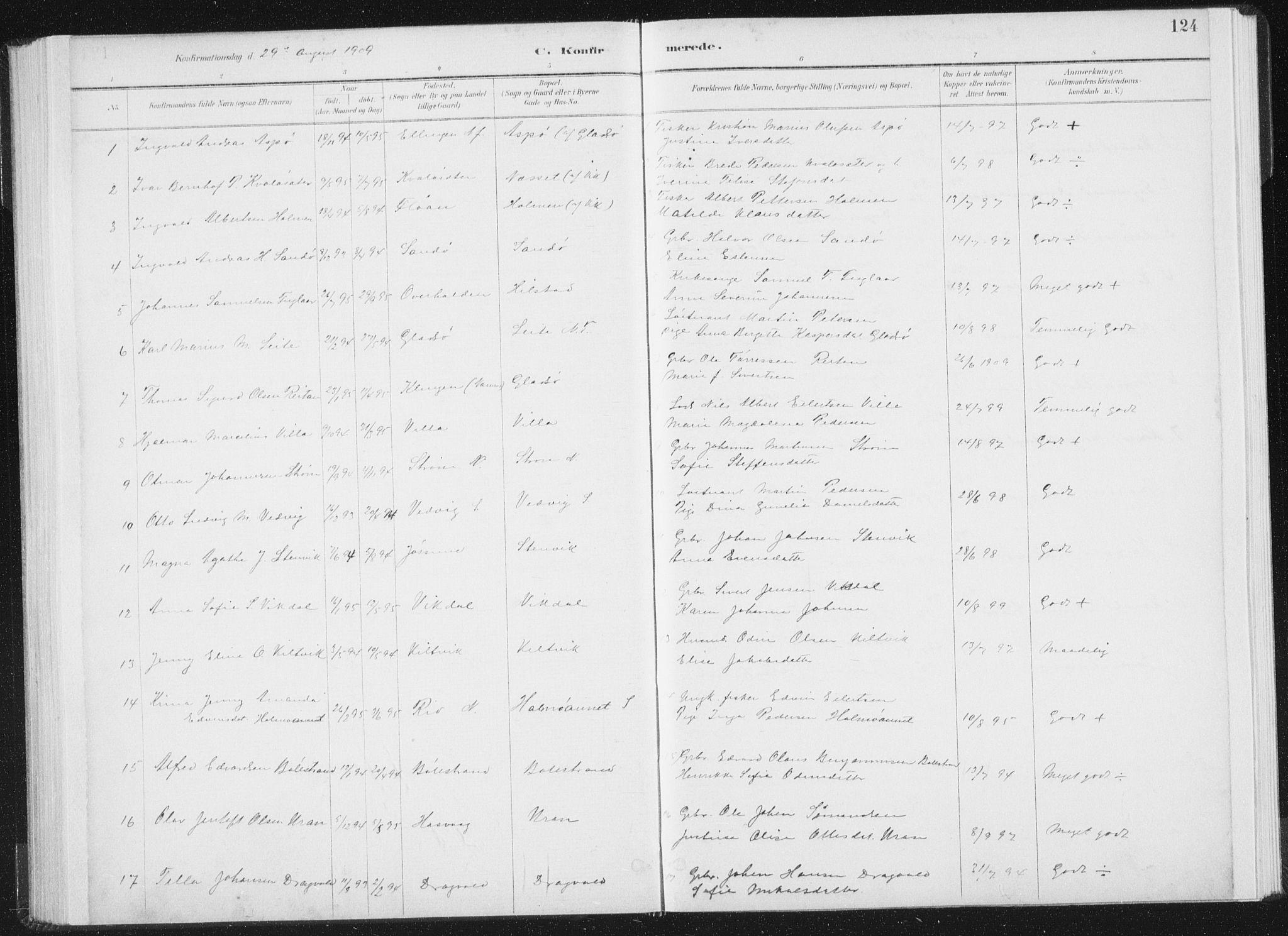 SAT, Ministerialprotokoller, klokkerbøker og fødselsregistre - Nord-Trøndelag, 771/L0597: Ministerialbok nr. 771A04, 1885-1910, s. 124