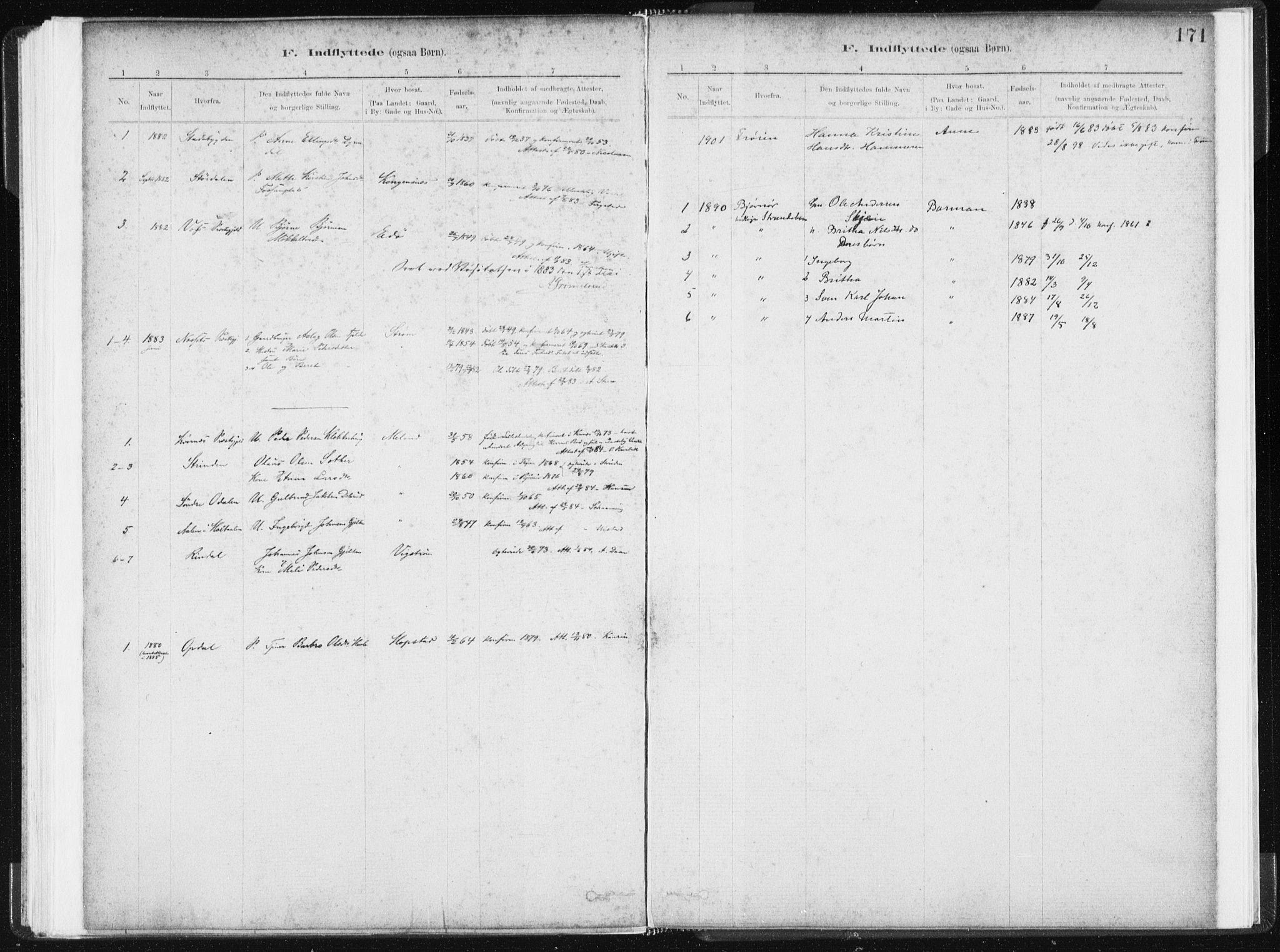 SAT, Ministerialprotokoller, klokkerbøker og fødselsregistre - Sør-Trøndelag, 634/L0533: Ministerialbok nr. 634A09, 1882-1901, s. 171
