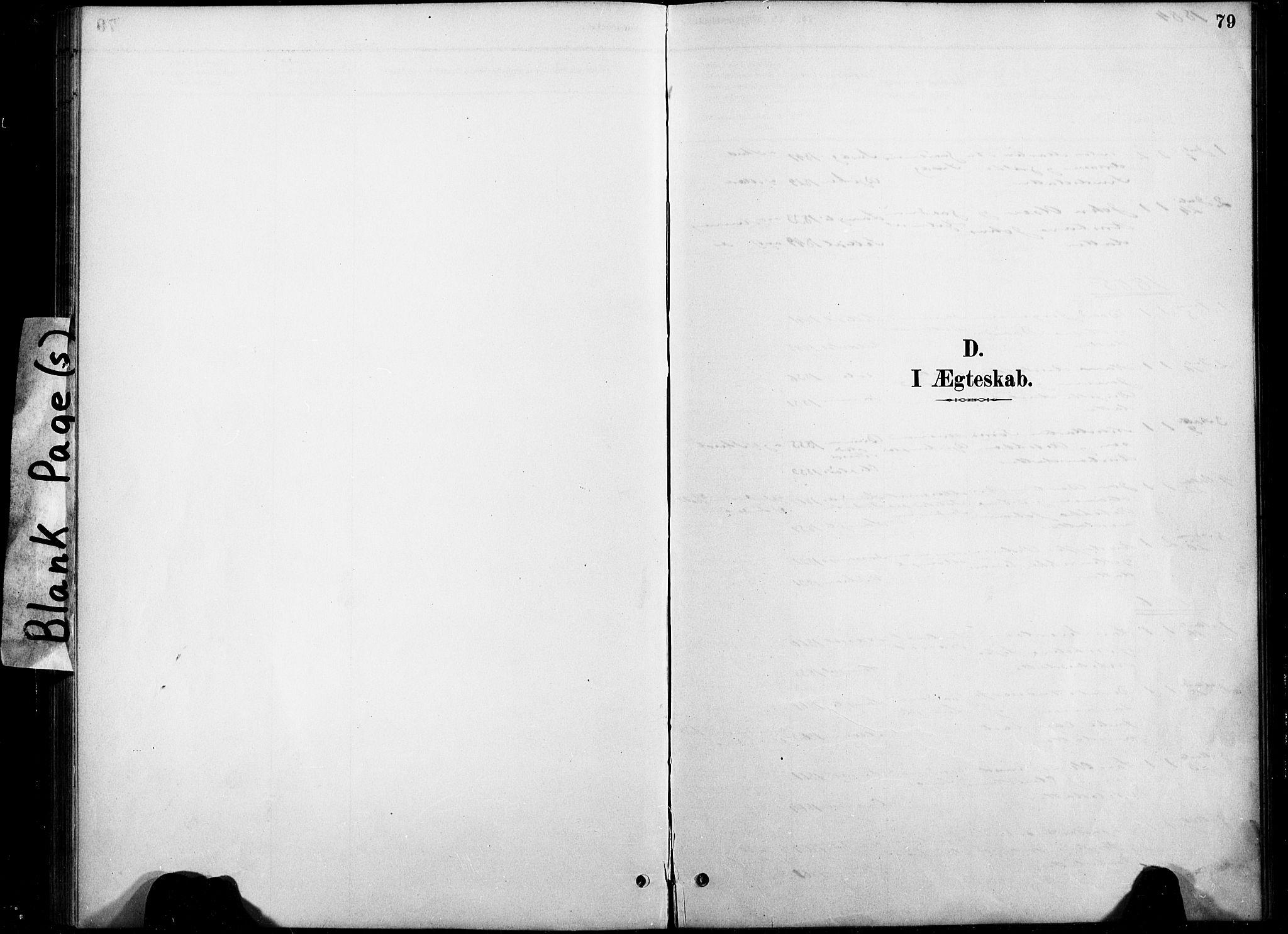 SAT, Ministerialprotokoller, klokkerbøker og fødselsregistre - Nord-Trøndelag, 738/L0364: Ministerialbok nr. 738A01, 1884-1902, s. 79