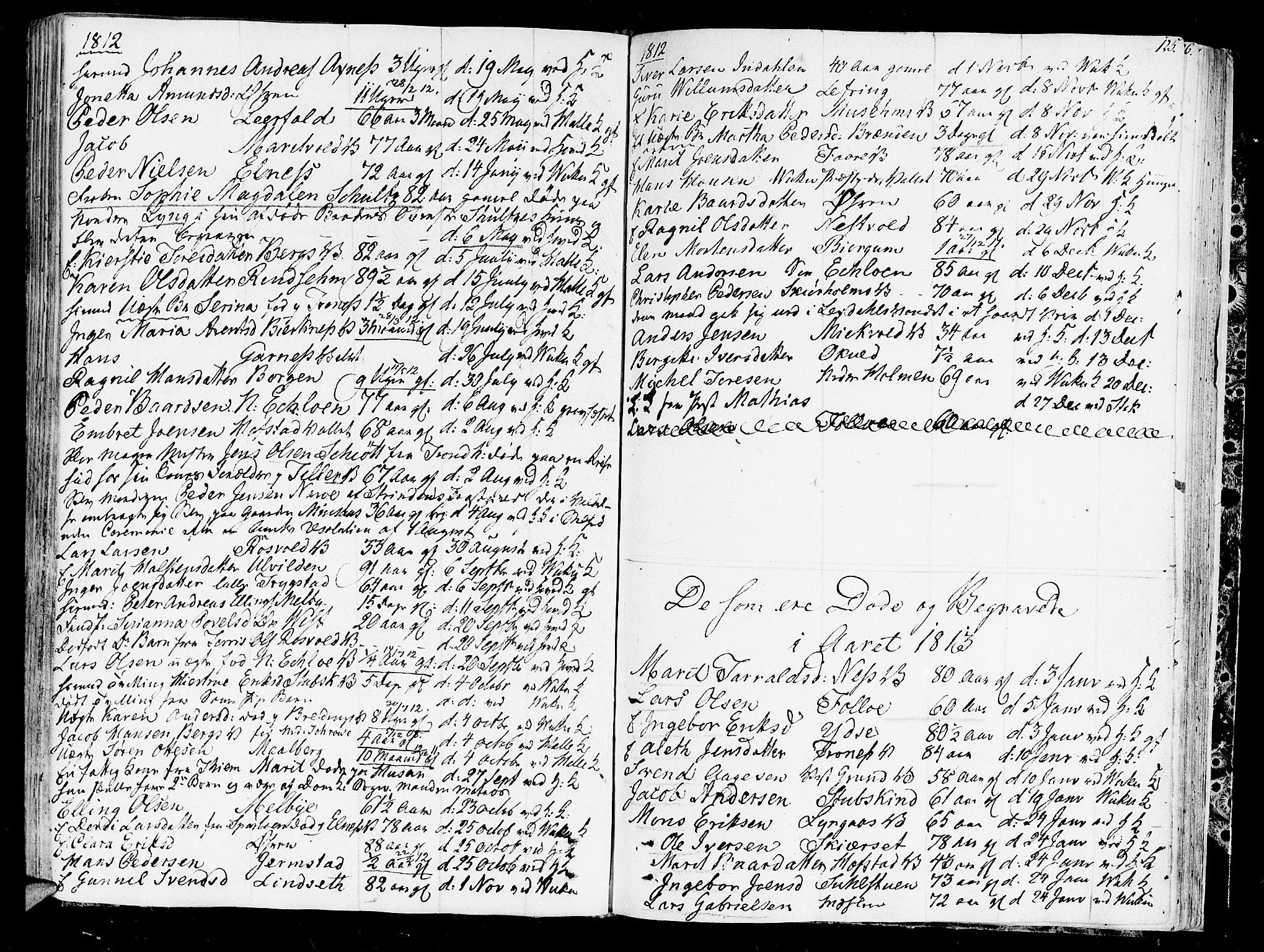 SAT, Ministerialprotokoller, klokkerbøker og fødselsregistre - Nord-Trøndelag, 723/L0233: Ministerialbok nr. 723A04, 1805-1816, s. 125