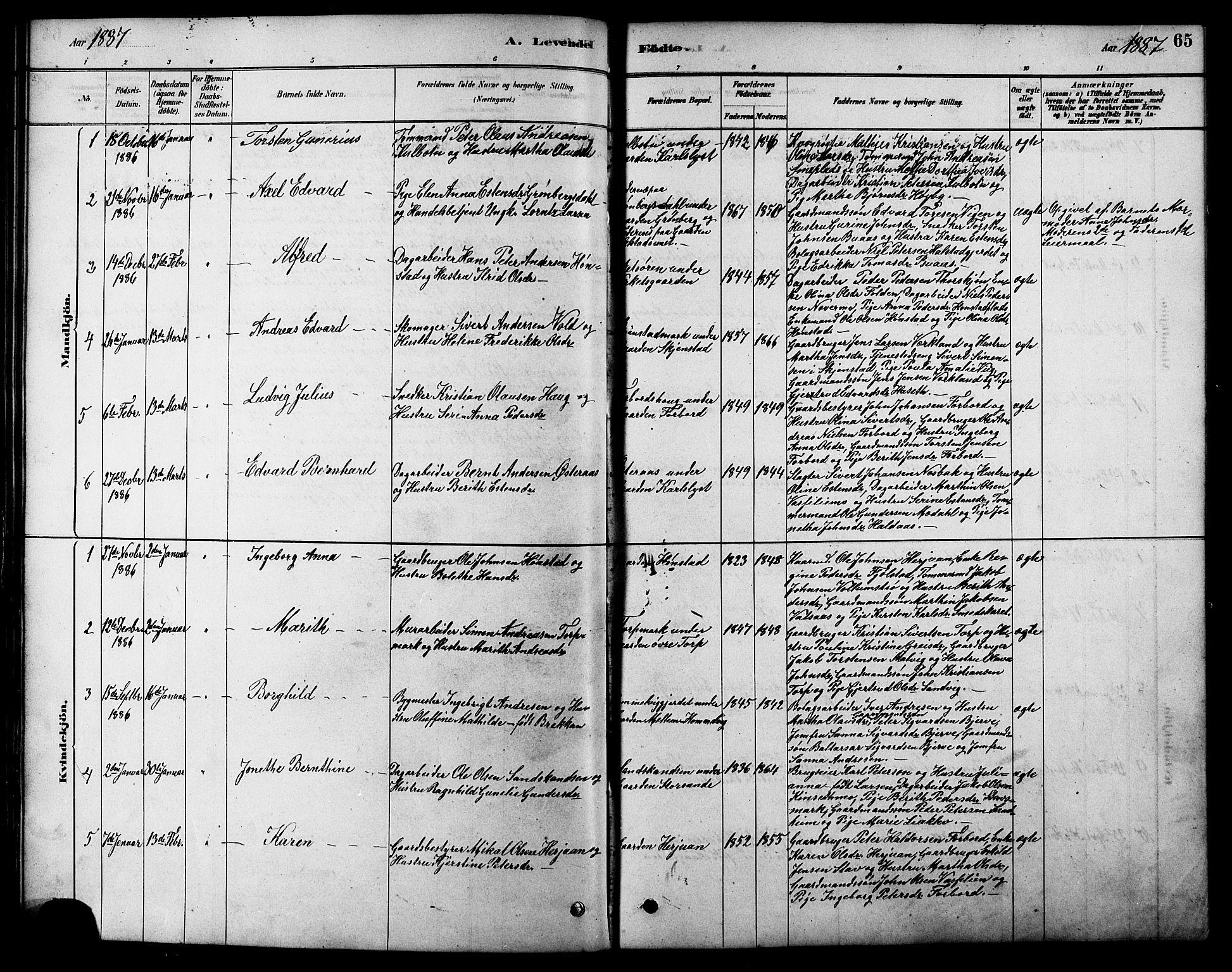 SAT, Ministerialprotokoller, klokkerbøker og fødselsregistre - Sør-Trøndelag, 616/L0423: Klokkerbok nr. 616C06, 1878-1903, s. 65