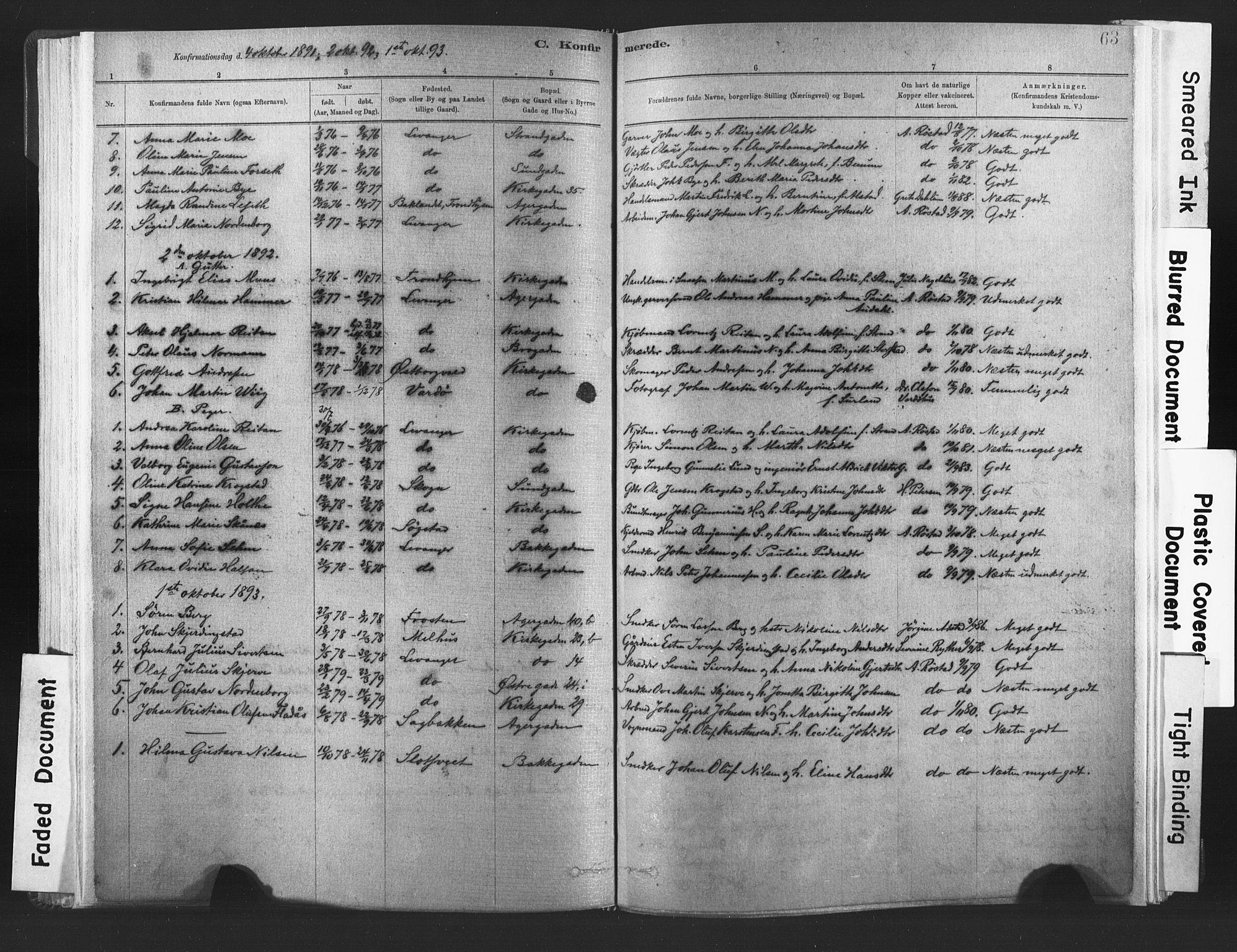 SAT, Ministerialprotokoller, klokkerbøker og fødselsregistre - Nord-Trøndelag, 720/L0189: Ministerialbok nr. 720A05, 1880-1911, s. 63