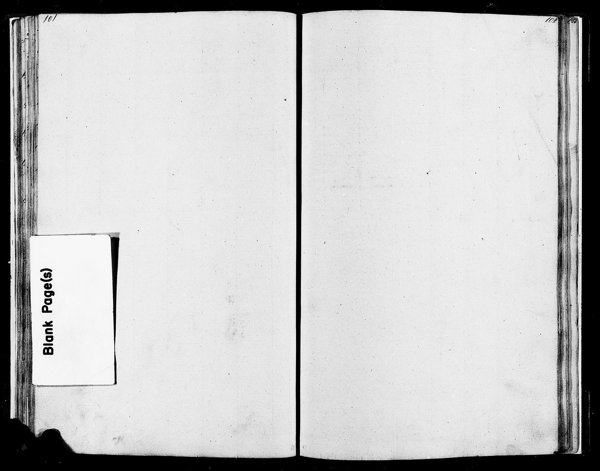 SAH, Lesja prestekontor, Klokkerbok nr. 4, 1842-1871, s. 101-102