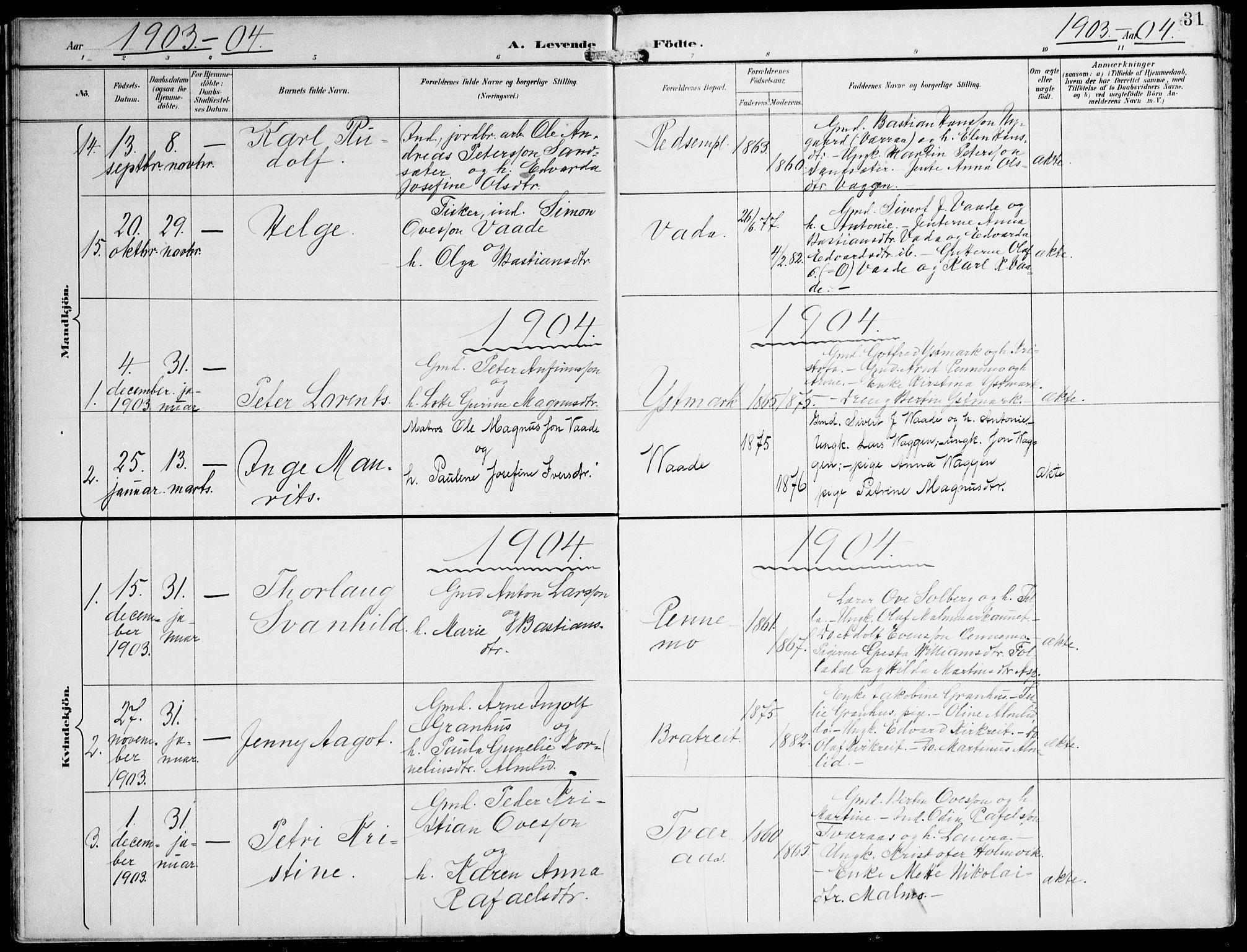 SAT, Ministerialprotokoller, klokkerbøker og fødselsregistre - Nord-Trøndelag, 745/L0430: Ministerialbok nr. 745A02, 1895-1913, s. 31