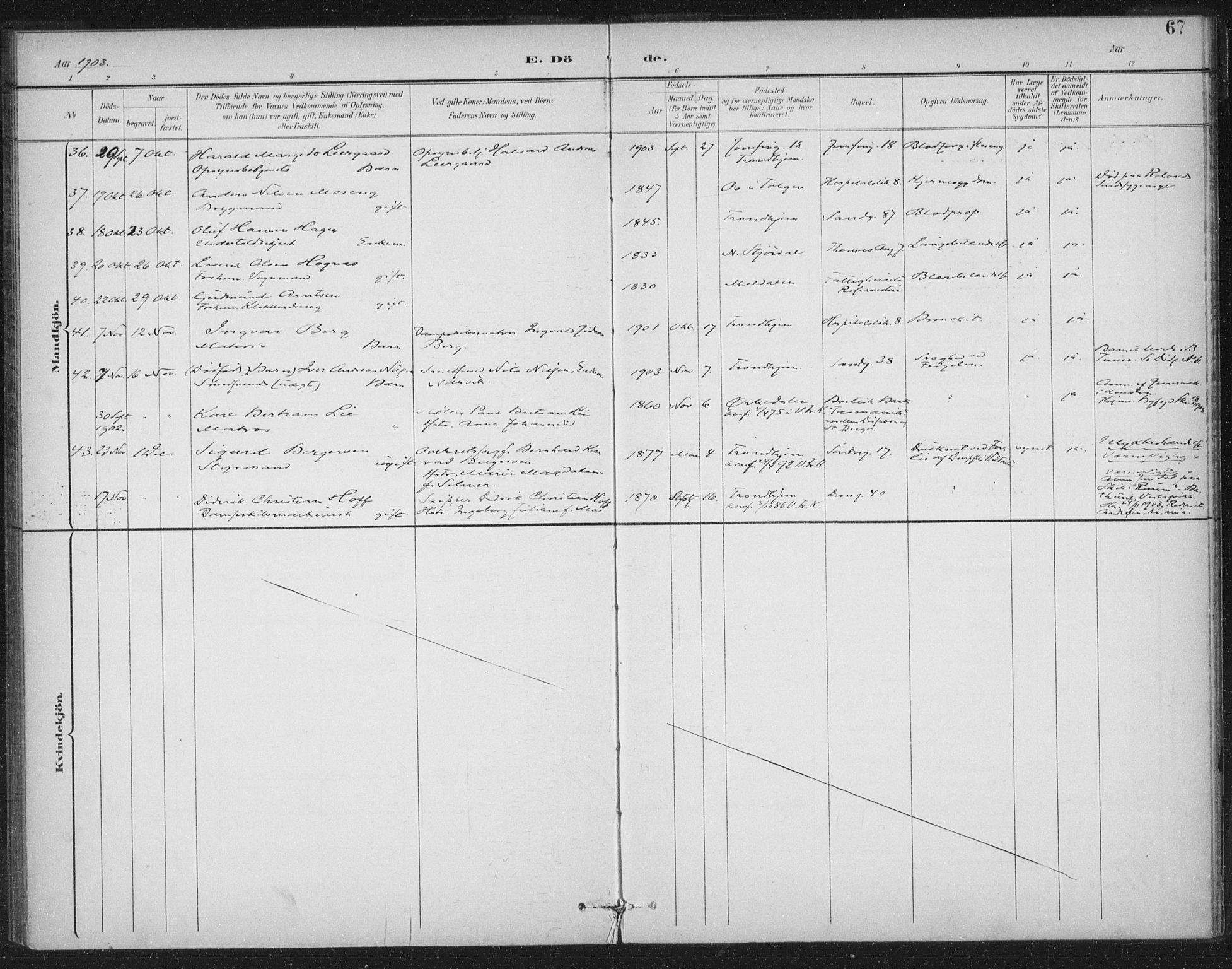 SAT, Ministerialprotokoller, klokkerbøker og fødselsregistre - Sør-Trøndelag, 602/L0123: Ministerialbok nr. 602A21, 1895-1910, s. 67