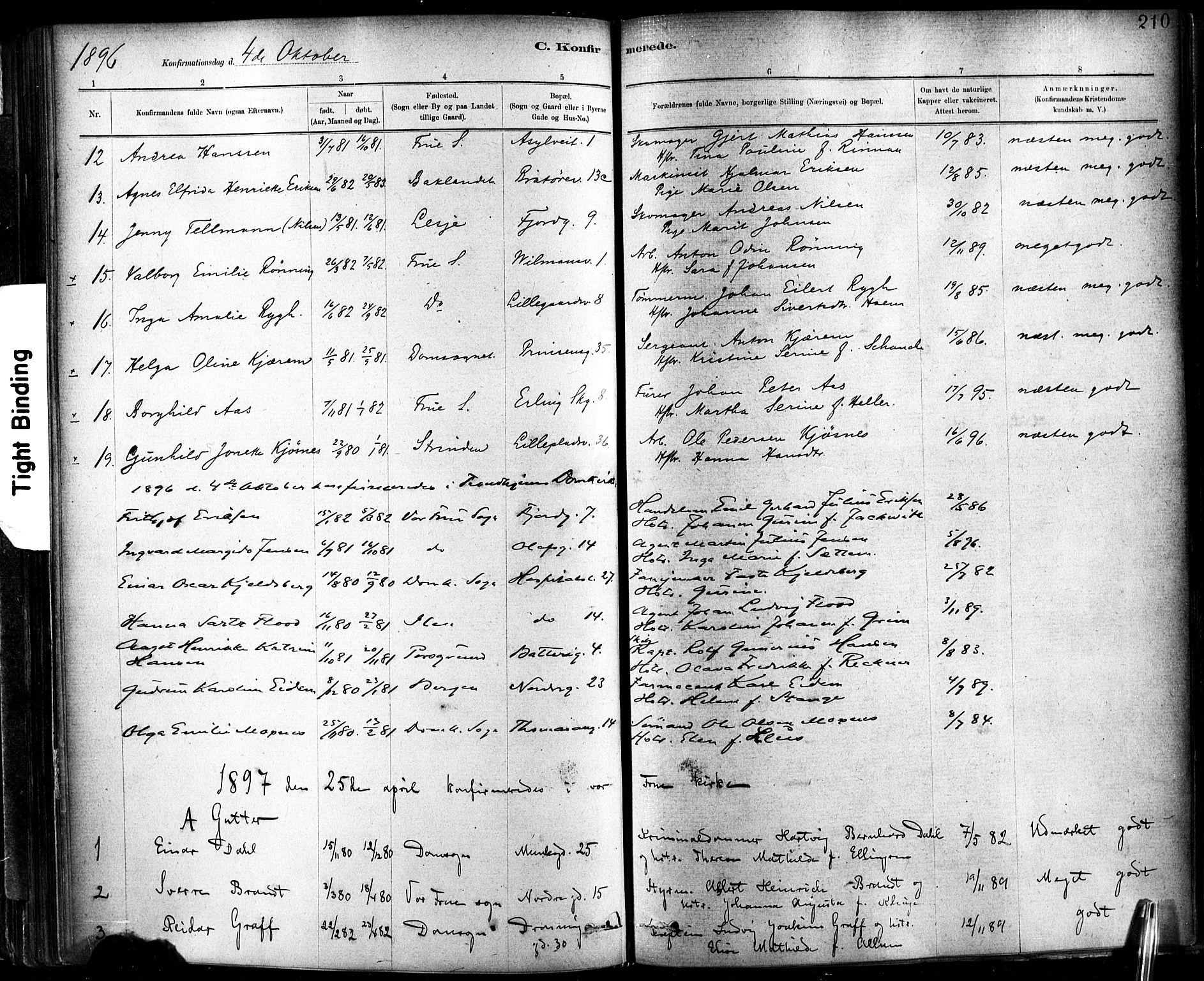 SAT, Ministerialprotokoller, klokkerbøker og fødselsregistre - Sør-Trøndelag, 602/L0119: Ministerialbok nr. 602A17, 1880-1901, s. 210