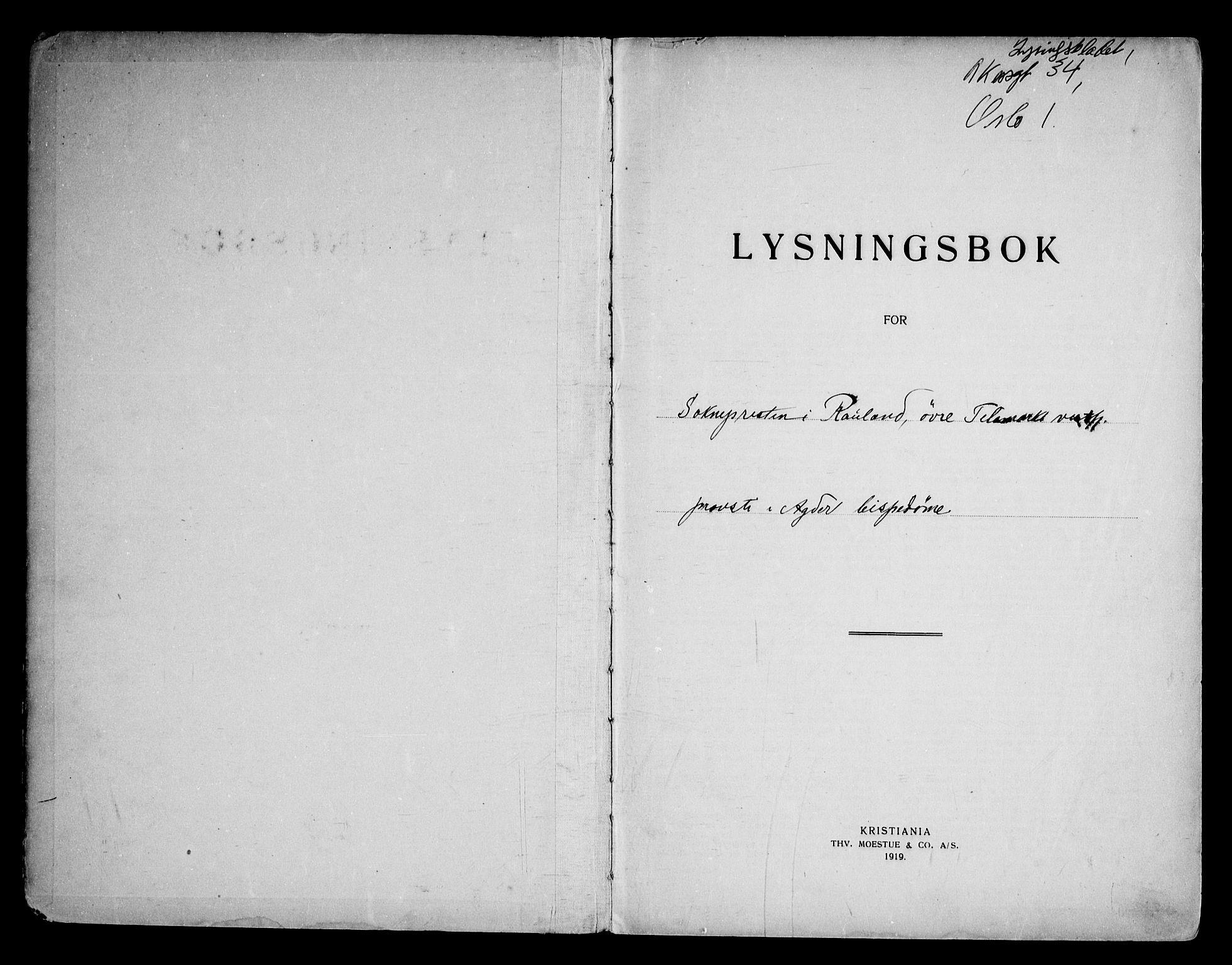 SAKO, Rauland kirkebøker, H/Ha/L0001: Lysningsprotokoll nr. 1, 1919-1971