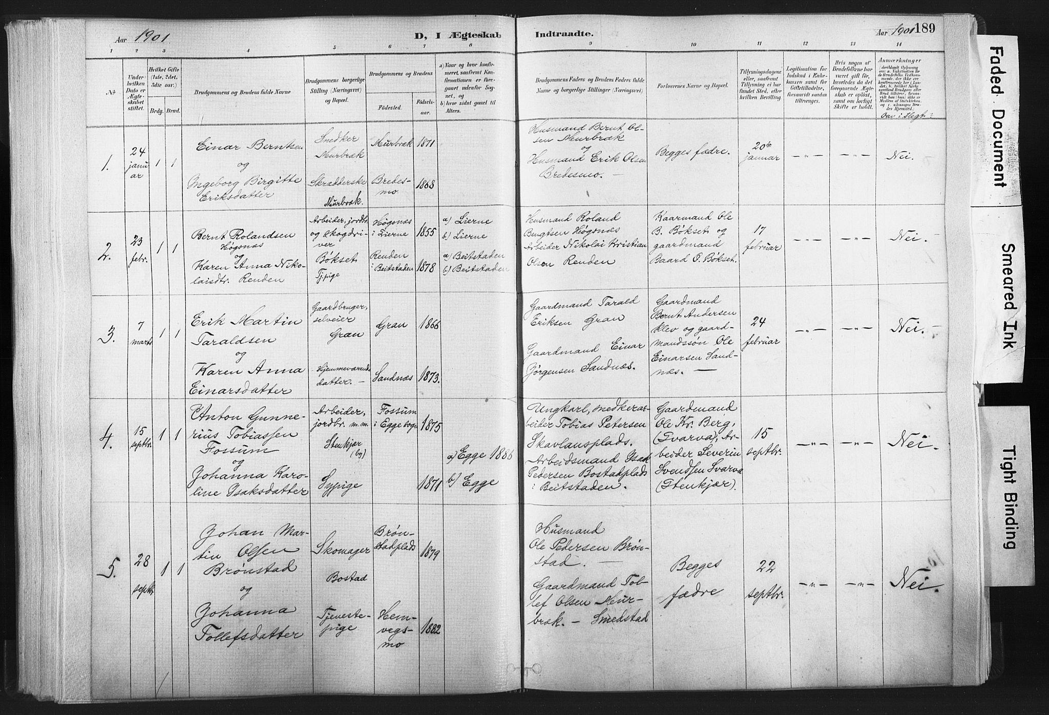 SAT, Ministerialprotokoller, klokkerbøker og fødselsregistre - Nord-Trøndelag, 749/L0474: Ministerialbok nr. 749A08, 1887-1903, s. 189