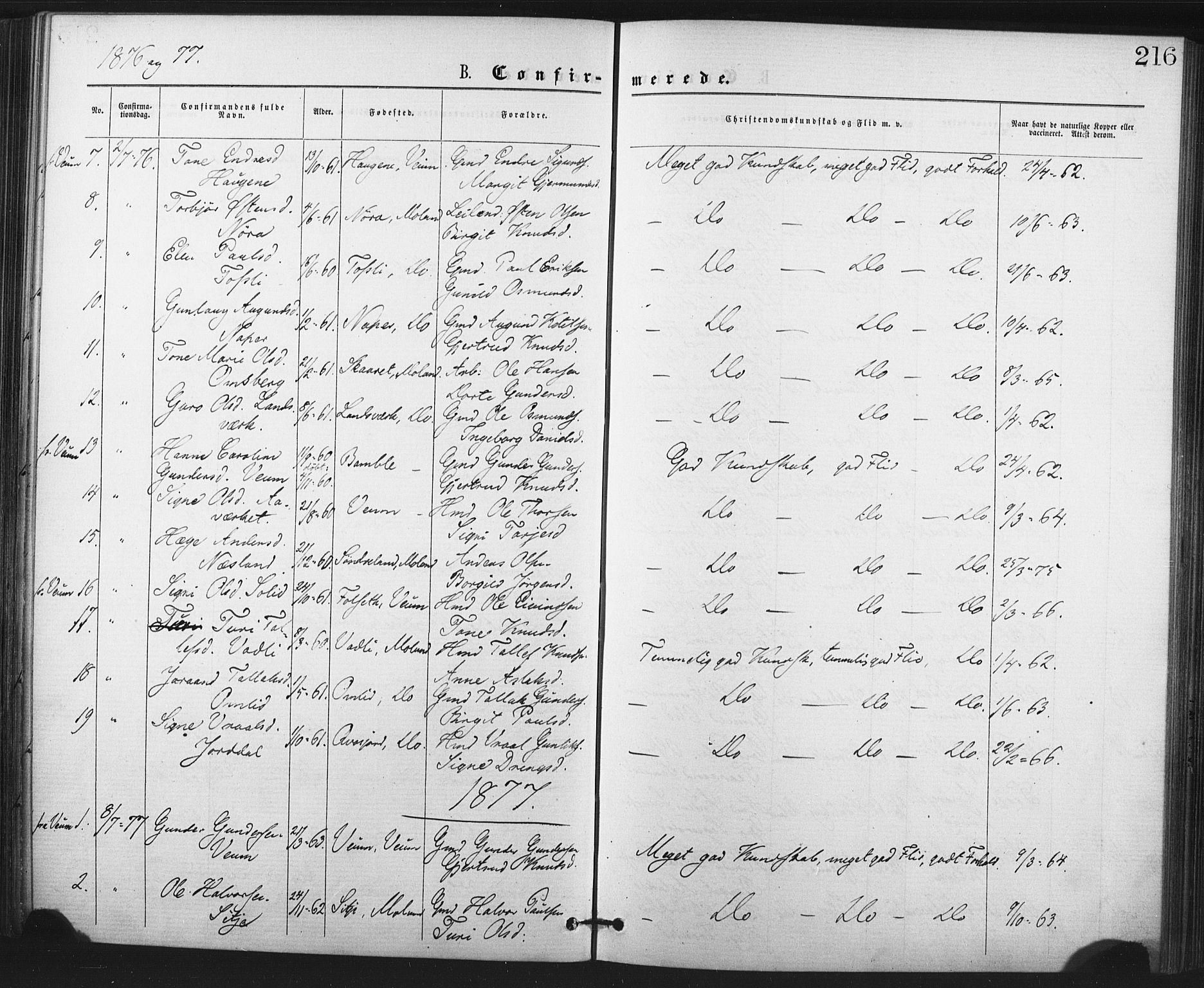 SAKO, Fyresdal kirkebøker, F/Fa/L0006: Ministerialbok nr. I 6, 1872-1886, s. 216