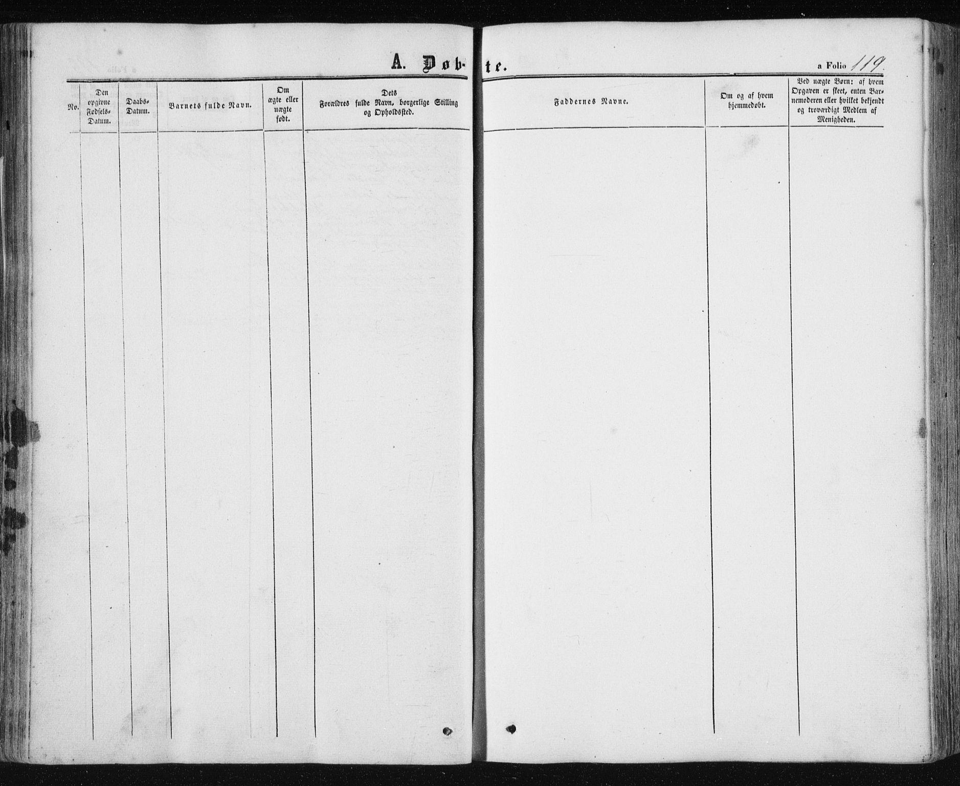 SAT, Ministerialprotokoller, klokkerbøker og fødselsregistre - Nord-Trøndelag, 780/L0641: Ministerialbok nr. 780A06, 1857-1874, s. 119