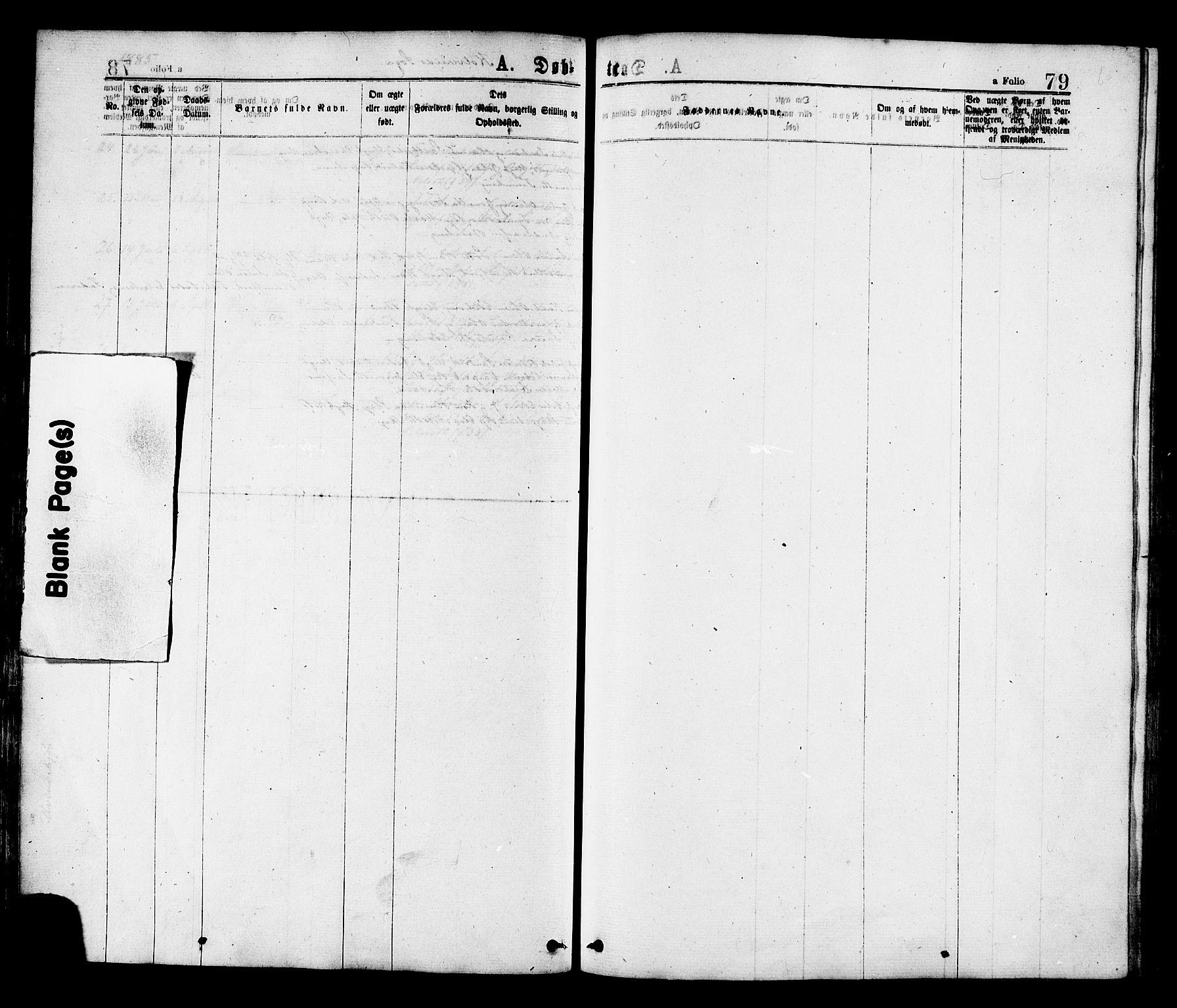 SAT, Ministerialprotokoller, klokkerbøker og fødselsregistre - Nord-Trøndelag, 780/L0642: Ministerialbok nr. 780A07 /1, 1874-1885, s. 79