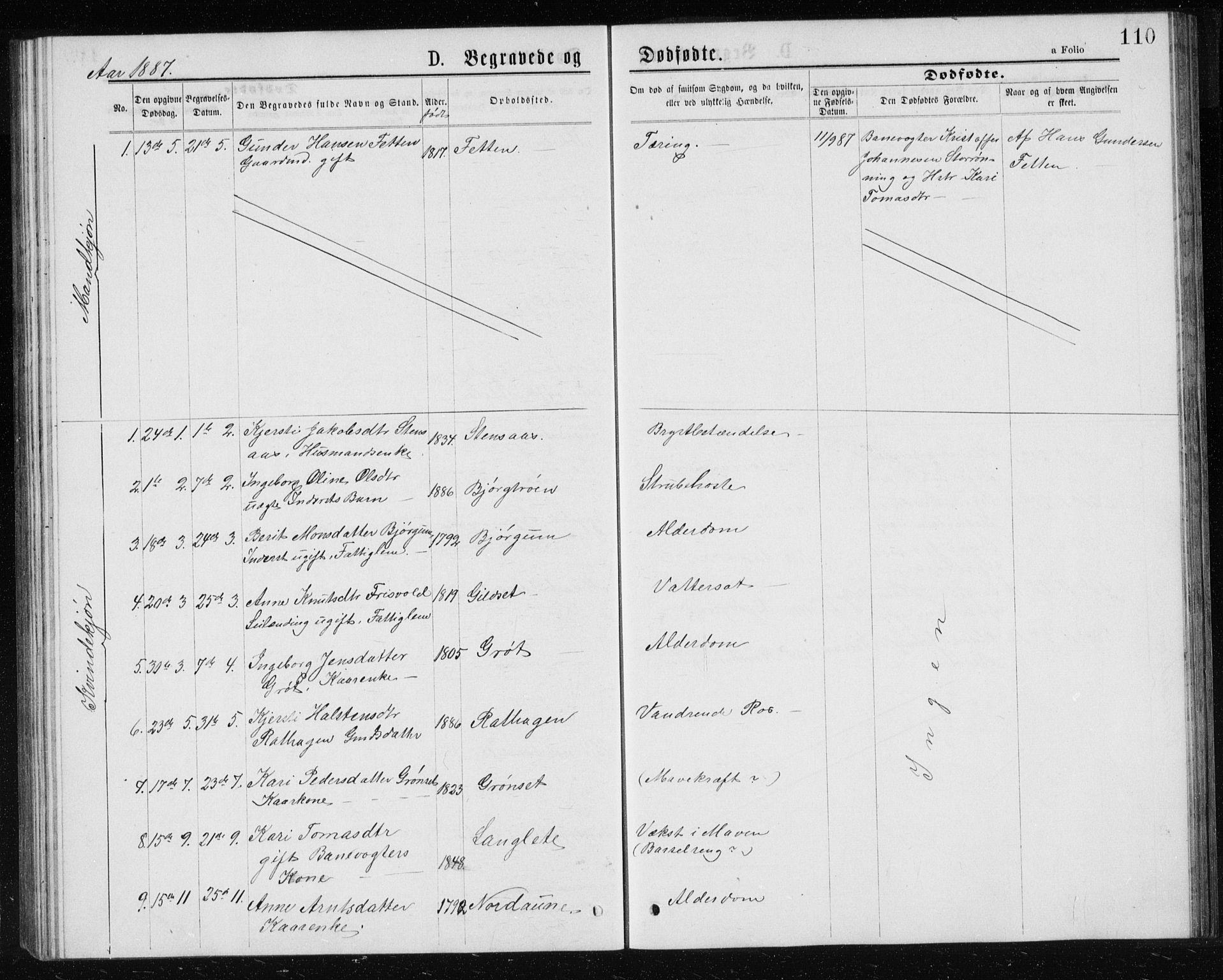 SAT, Ministerialprotokoller, klokkerbøker og fødselsregistre - Sør-Trøndelag, 685/L0977: Klokkerbok nr. 685C02, 1879-1890, s. 110