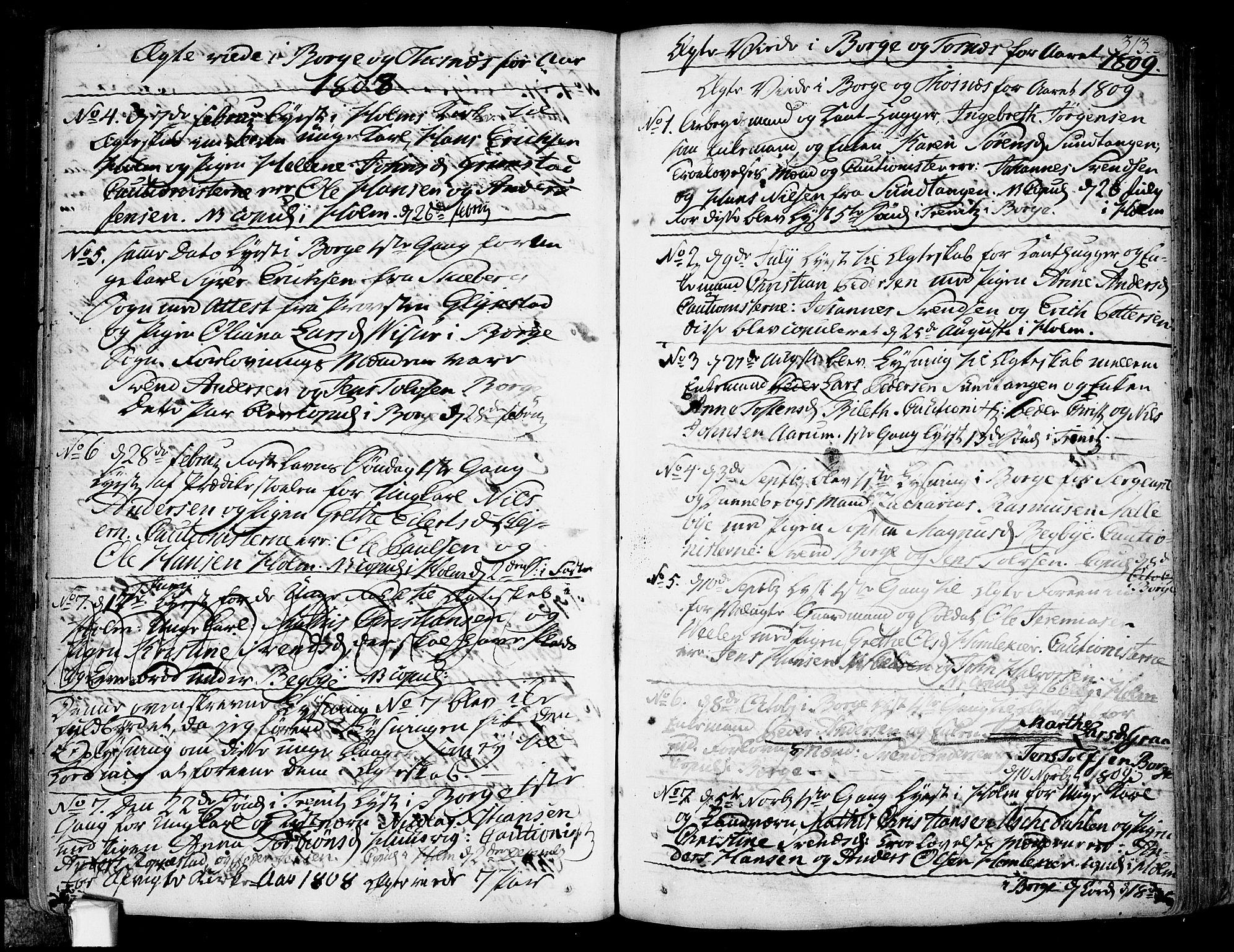 SAO, Borge prestekontor Kirkebøker, F/Fa/L0002: Ministerialbok nr. I 2, 1791-1817, s. 313