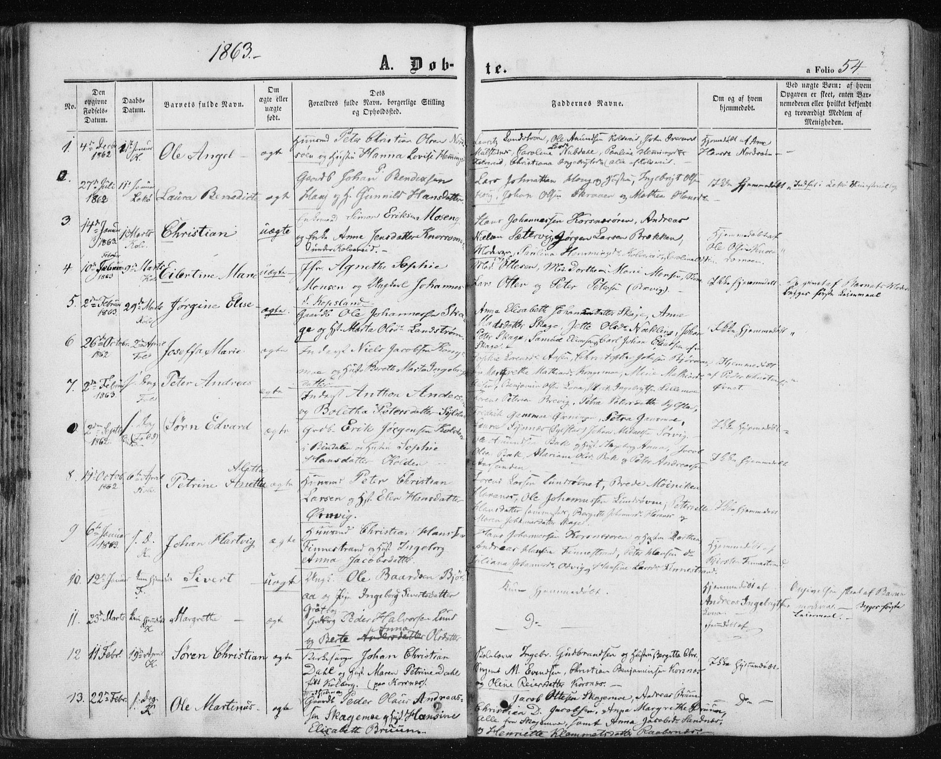 SAT, Ministerialprotokoller, klokkerbøker og fødselsregistre - Nord-Trøndelag, 780/L0641: Ministerialbok nr. 780A06, 1857-1874, s. 54