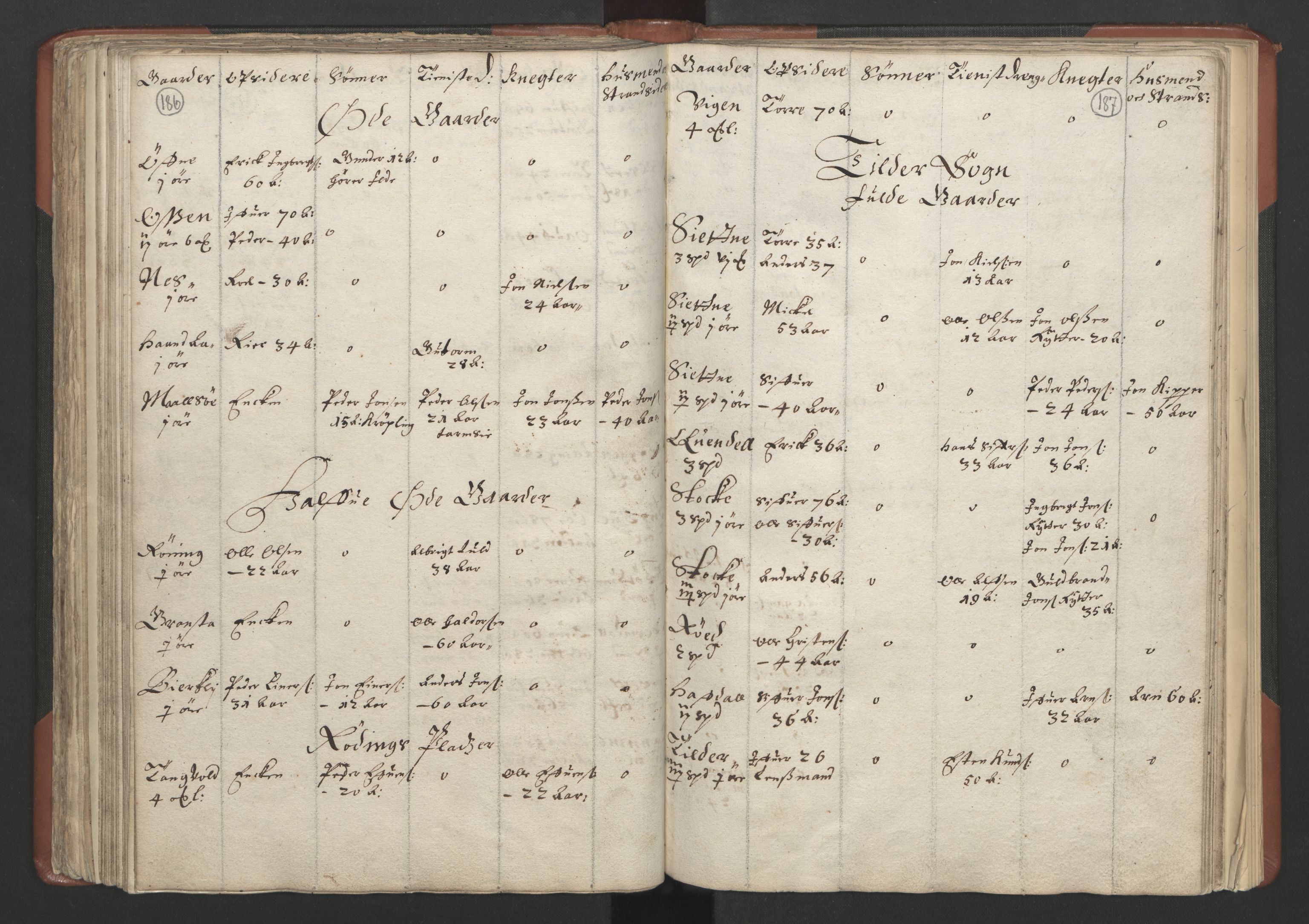 RA, Fogdenes og sorenskrivernes manntall 1664-1666, nr. 18: Gauldal fogderi, Strinda fogderi og Orkdal fogderi, 1664, s. 186-187