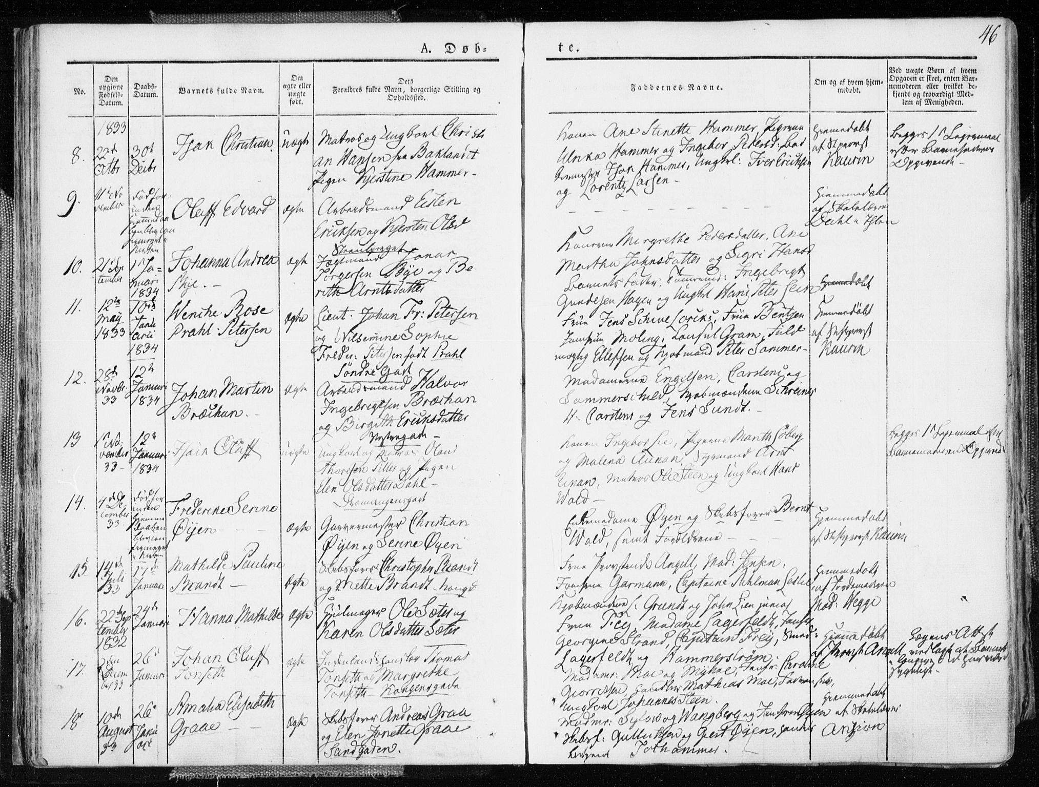 SAT, Ministerialprotokoller, klokkerbøker og fødselsregistre - Sør-Trøndelag, 601/L0047: Ministerialbok nr. 601A15, 1831-1839, s. 46