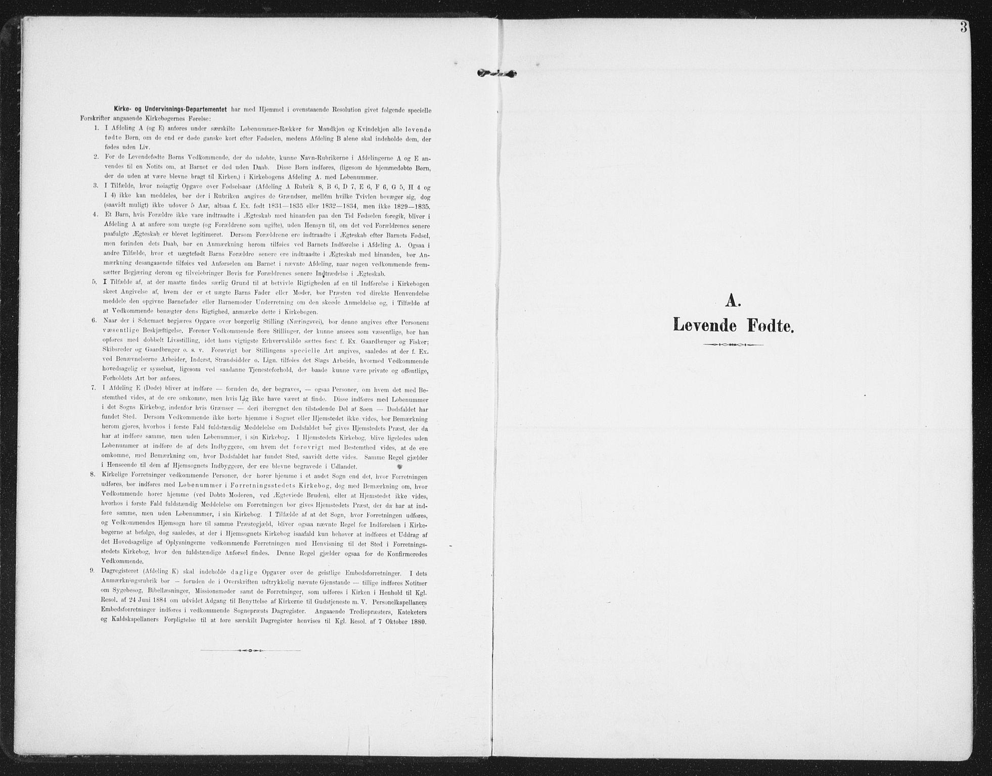 SAT, Ministerialprotokoller, klokkerbøker og fødselsregistre - Nordland, 886/L1221: Ministerialbok nr. 886A03, 1903-1913, s. 3