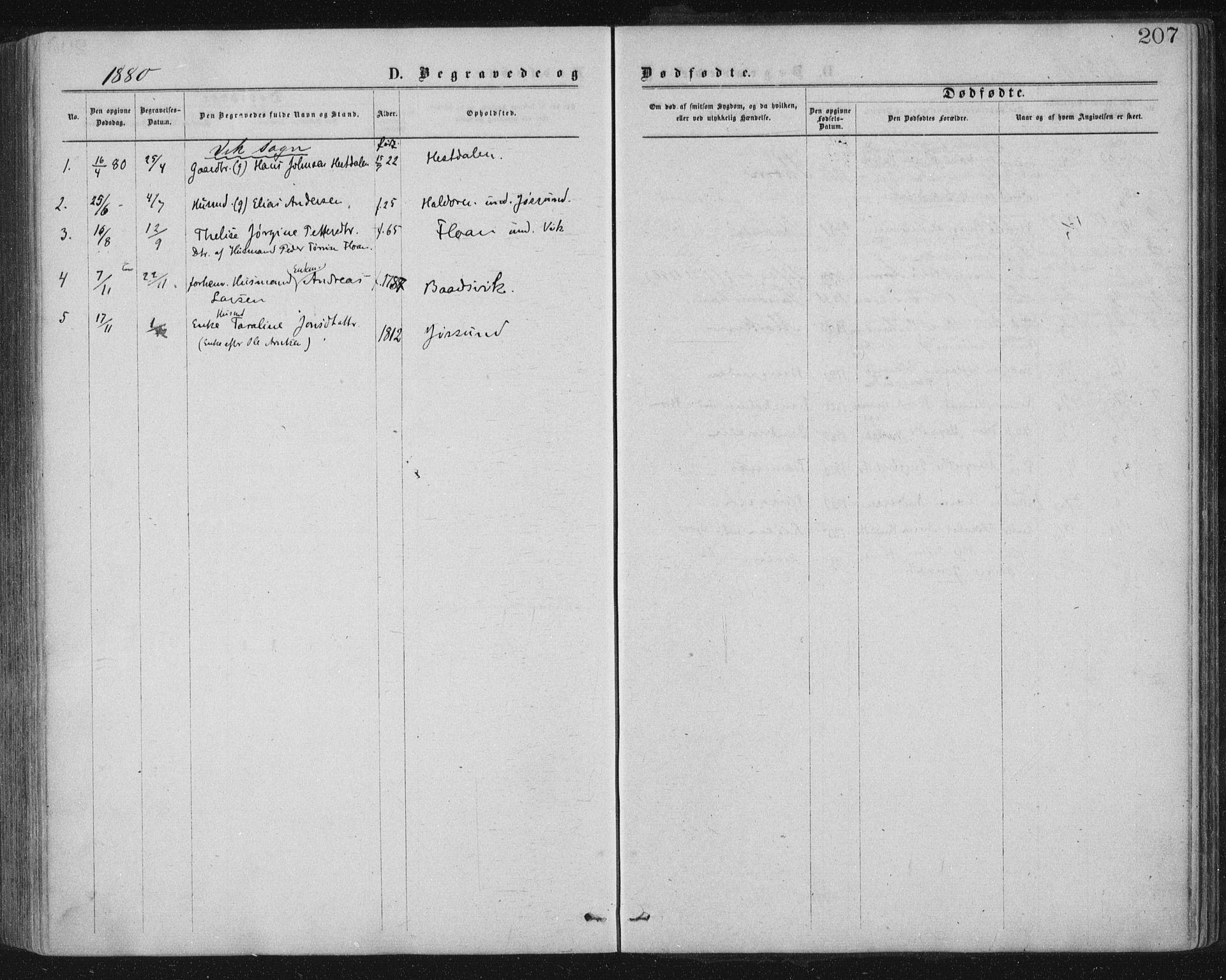SAT, Ministerialprotokoller, klokkerbøker og fødselsregistre - Nord-Trøndelag, 771/L0596: Ministerialbok nr. 771A03, 1870-1884, s. 207
