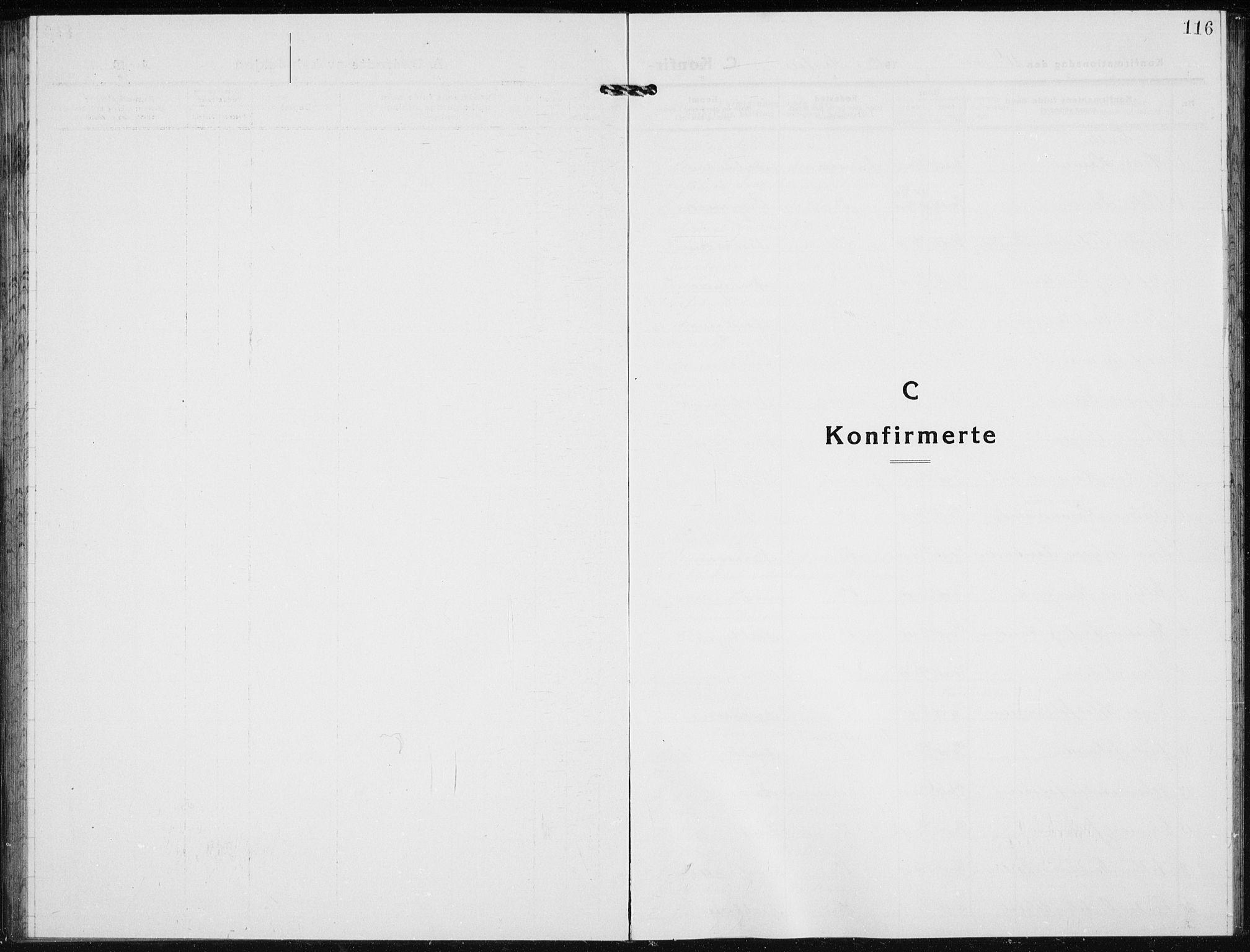 SAH, Jevnaker prestekontor, Klokkerbok nr. 5, 1919-1934, s. 116