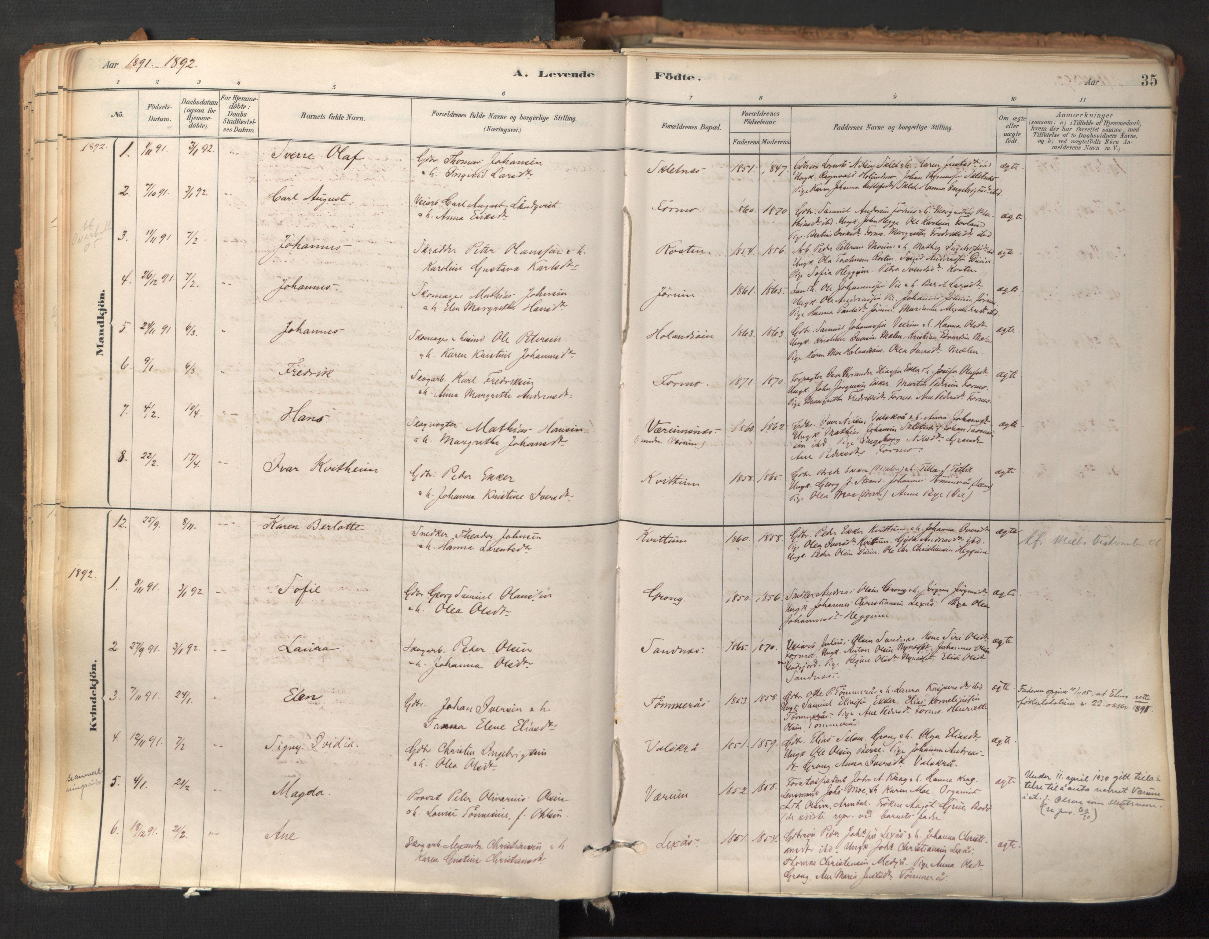 SAT, Ministerialprotokoller, klokkerbøker og fødselsregistre - Nord-Trøndelag, 758/L0519: Ministerialbok nr. 758A04, 1880-1926, s. 35
