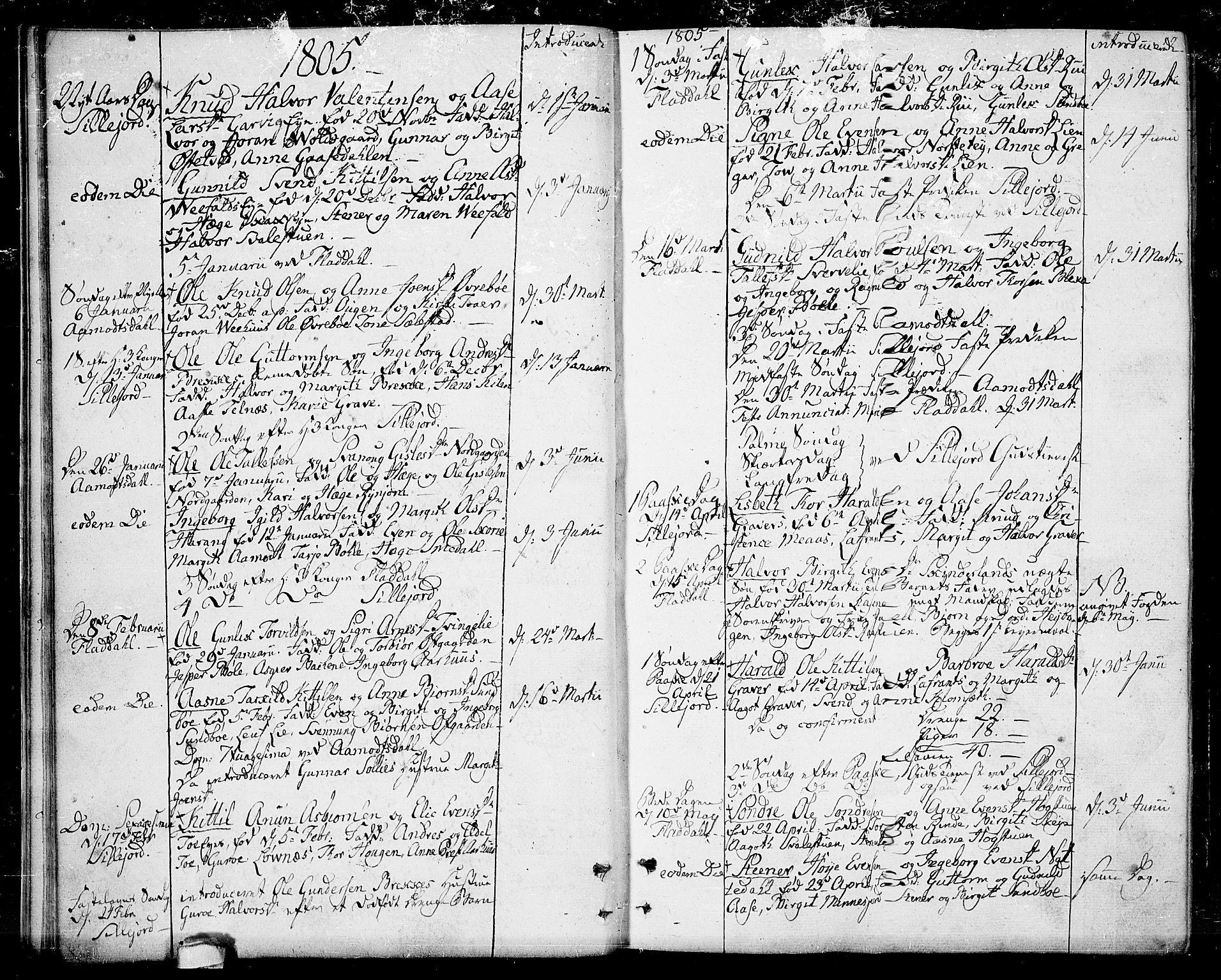 SAKO, Seljord kirkebøker, F/Fa/L0009: Ministerialbok nr. I 9, 1801-1814, s. 19