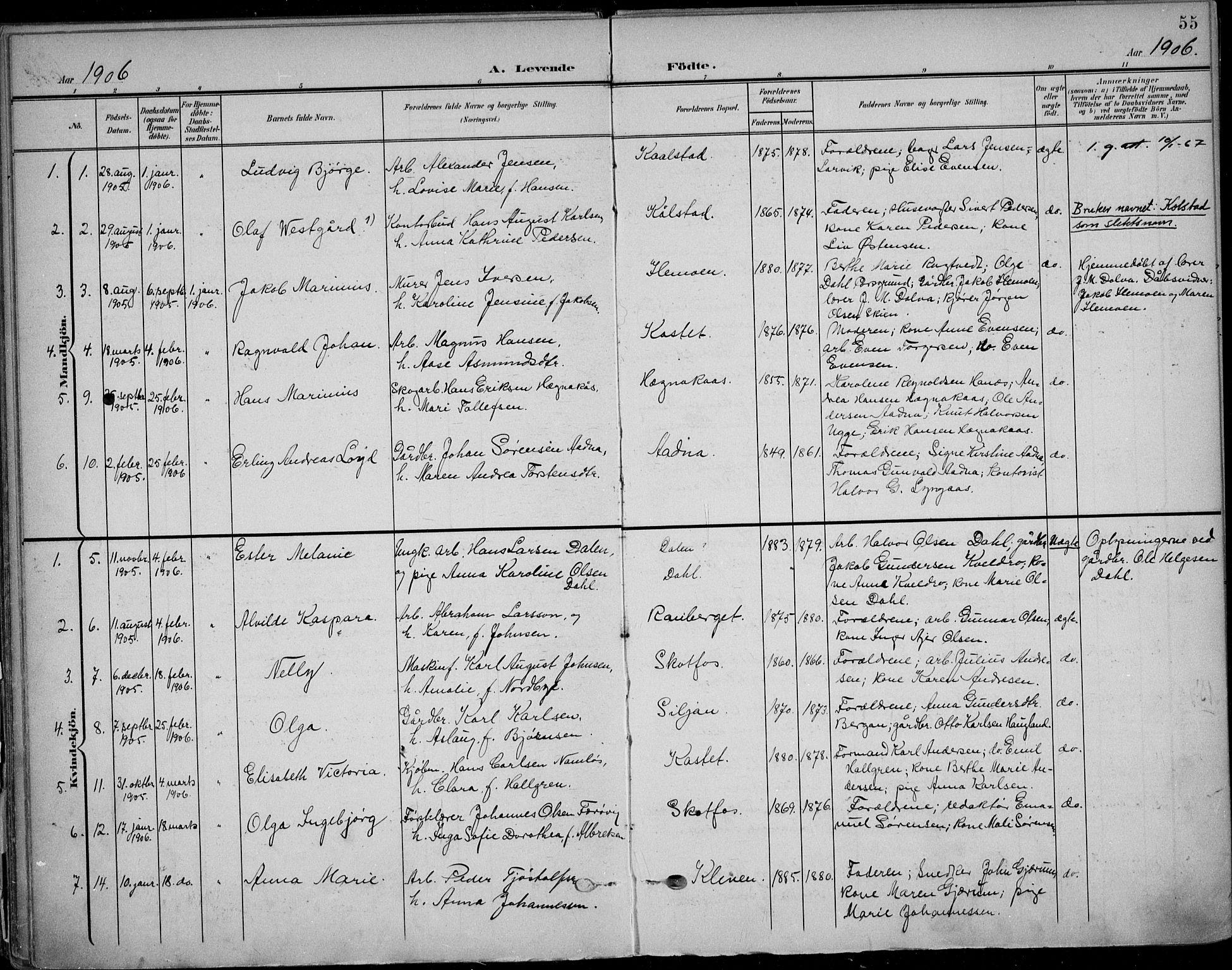 SAKO, Solum kirkebøker, F/Fb/L0003: Ministerialbok nr. II 3, 1901-1912, s. 55