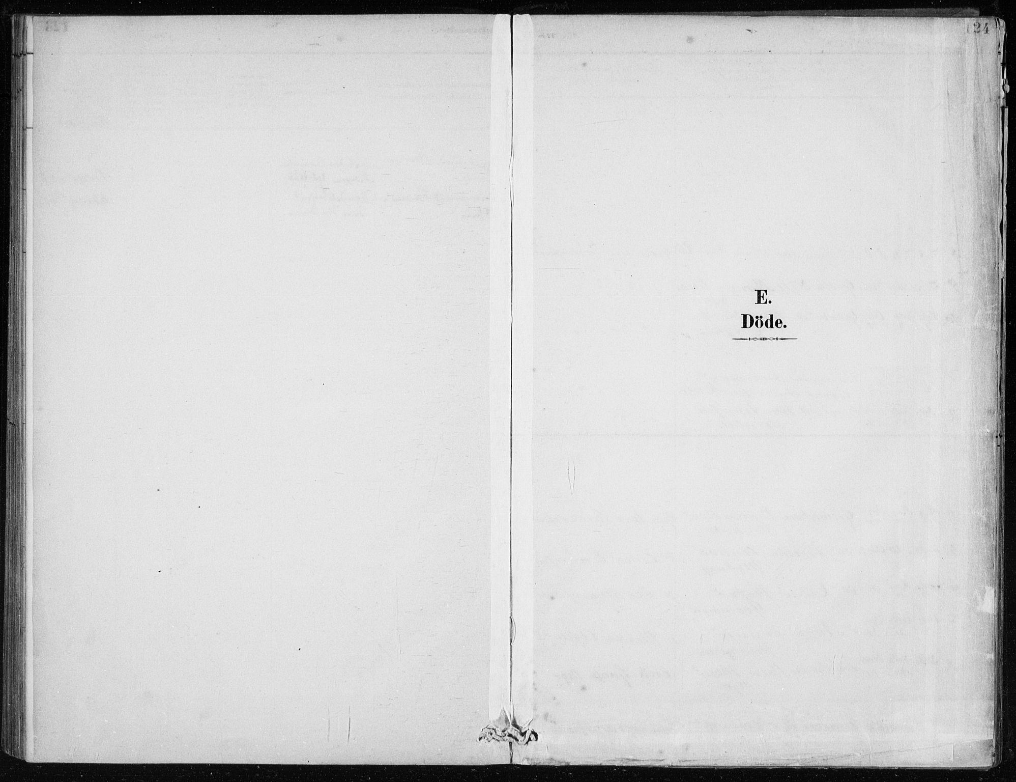 SAB, Lindås Sokneprestembete, H/Haa: Ministerialbok nr. F  1, 1886-1897, s. 124